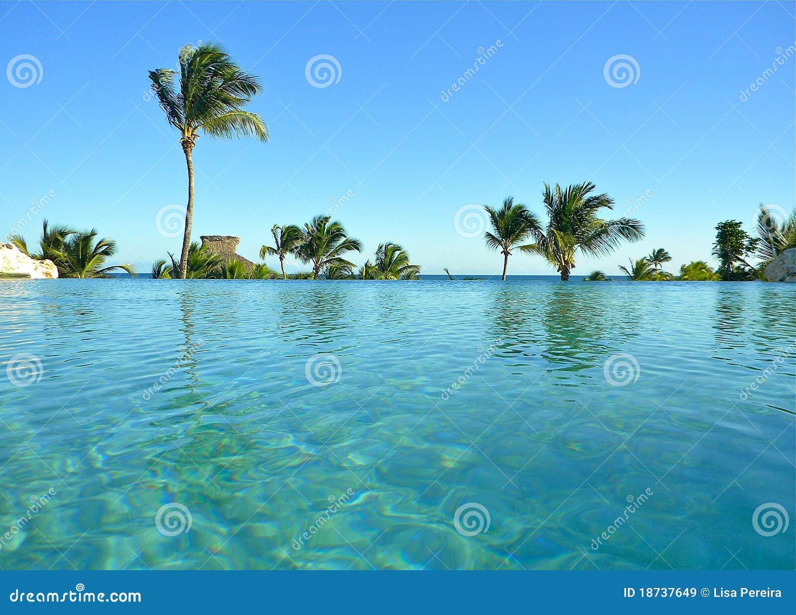 infinity pool punta cana resort stock image image of. Black Bedroom Furniture Sets. Home Design Ideas