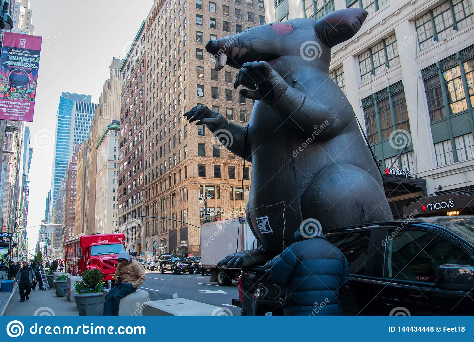 Inflatable rat on a New York city street in front of a non-union construction site at Macy`s Department store with protestors see