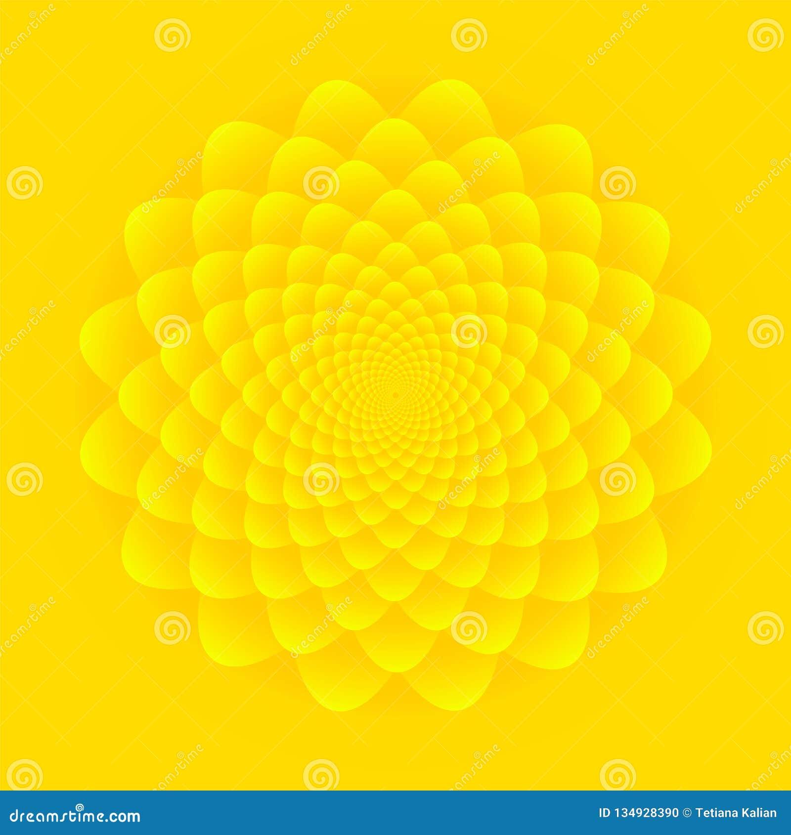 Inflorescência do girassol Projeto floral abstrato do teste padrão no fundo amarelo brilhante