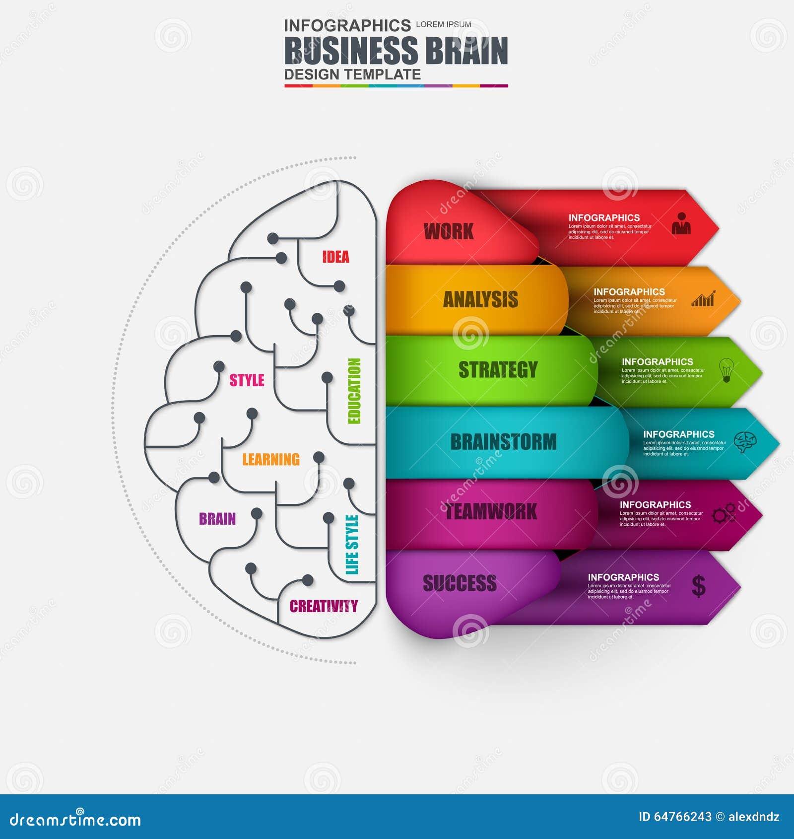 Infographic Brain Vector Design Template Stock Vector