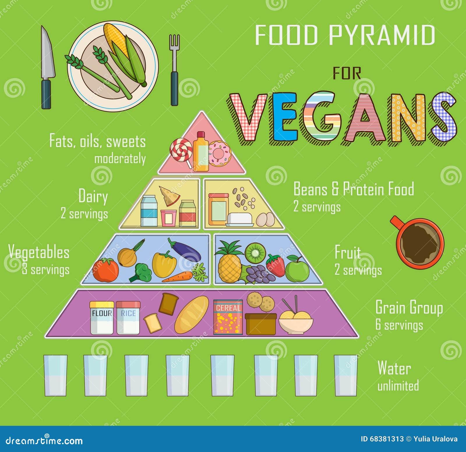 Infographic Diagramm Illustration Einer