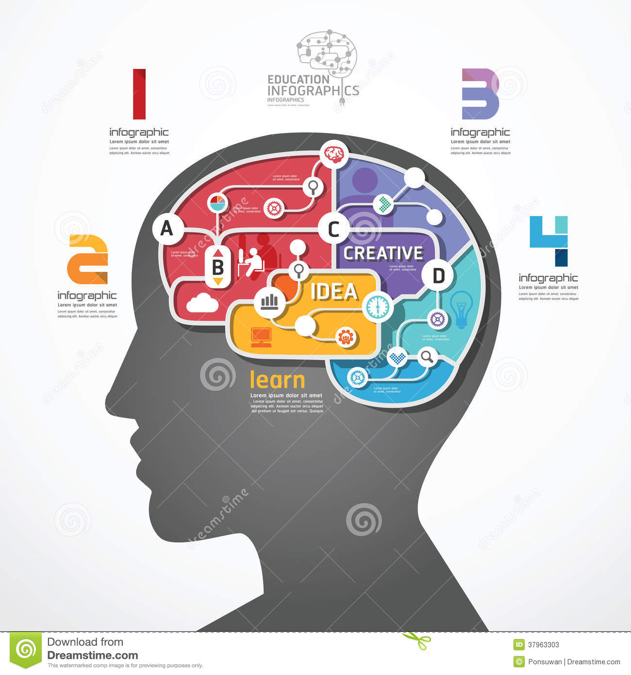 Infographic Template Brain Social Line Link Concep Stock Photos ...