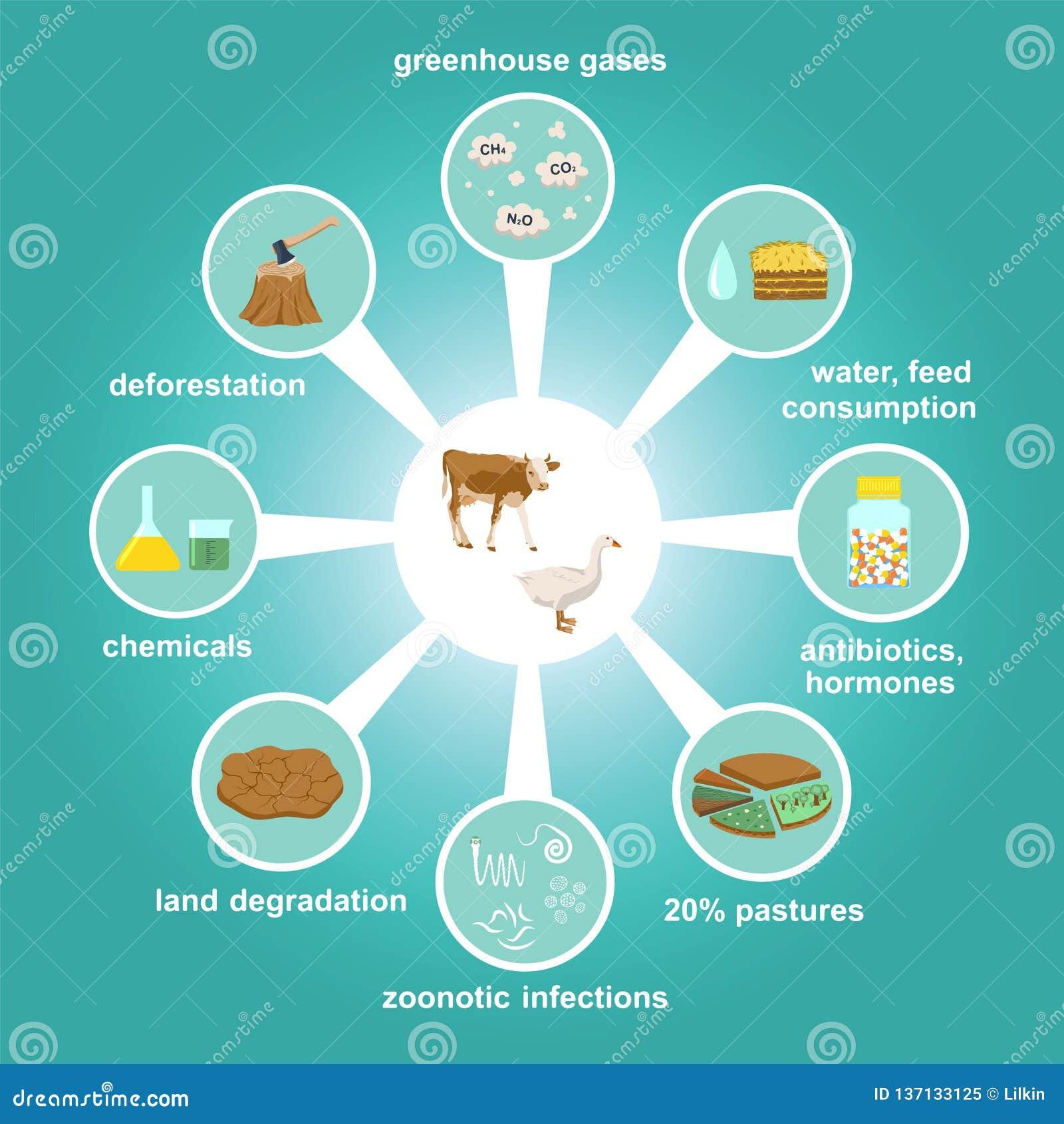 Infographic van de industriële fabriek landbouw