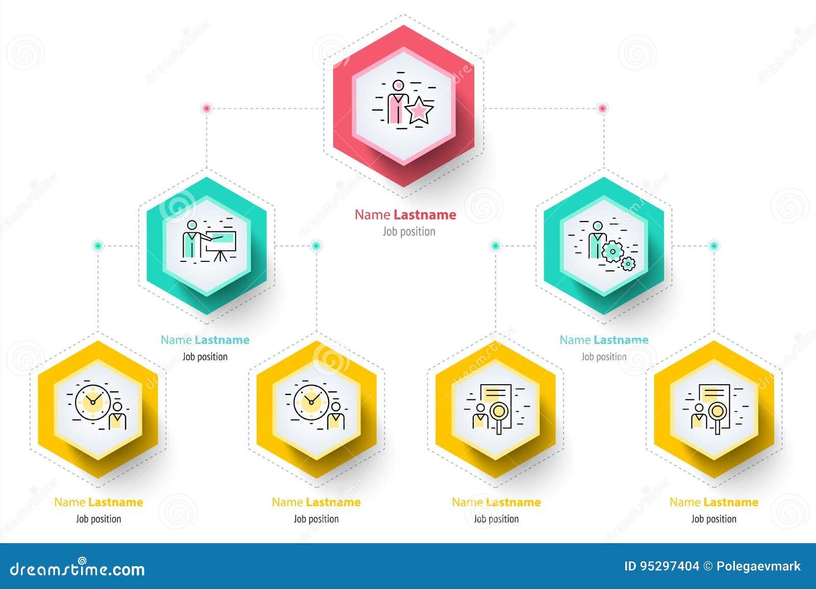 Infographics диаграммы organogram иерархии дела корпоративно
