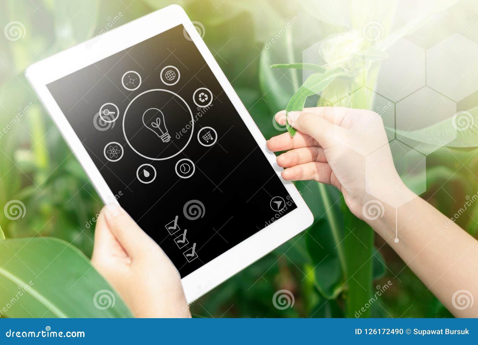 Infographics av bonden som använder den digitala minnestavladatoren i cultivat