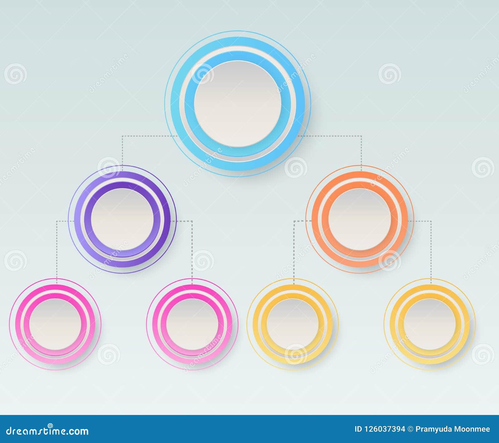 Infographics de diagramme d organogram de hiérarchie d affaires Orga d entreprise