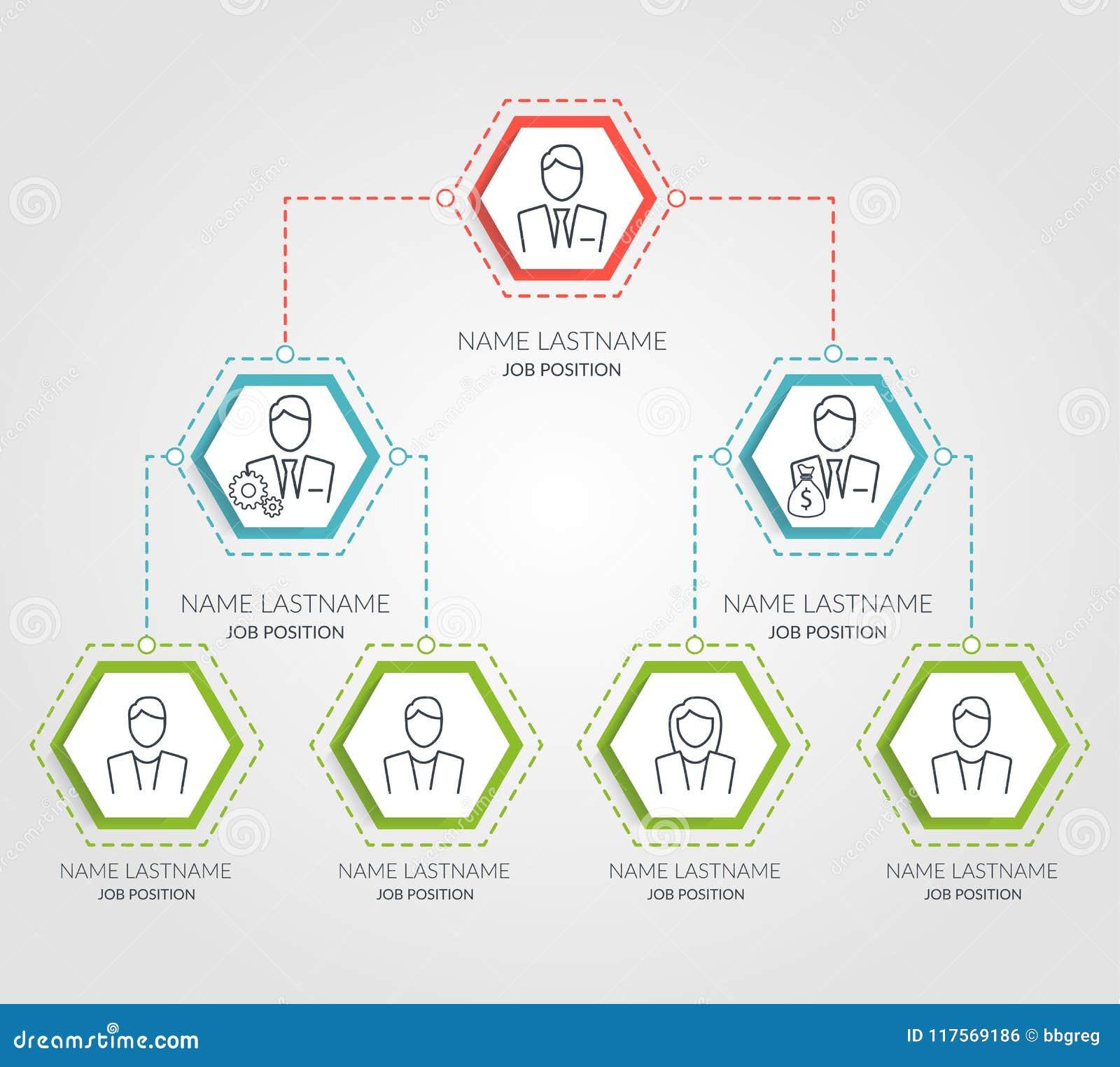 Infographics de la carta del hexágono de la jerarquía del negocio Elementos corporativos del gráfico de la estructura de organiza