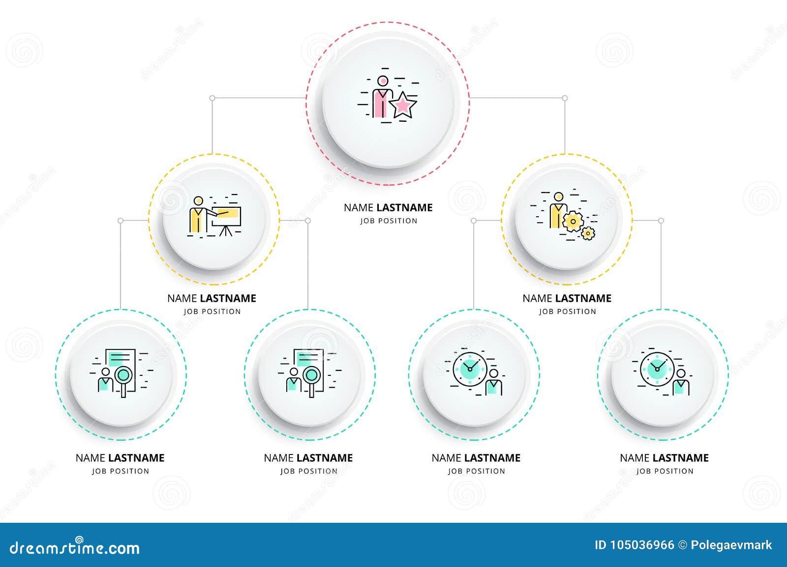 Infographics de la carta del organogram de la jerarquía del negocio Orga corporativo