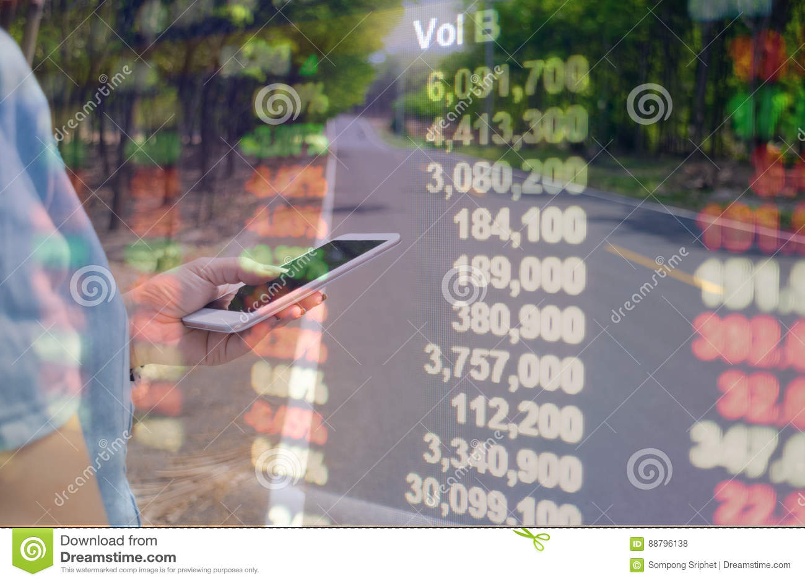 Información financiera en línea de los teléfonos elegantes de la exposición doble