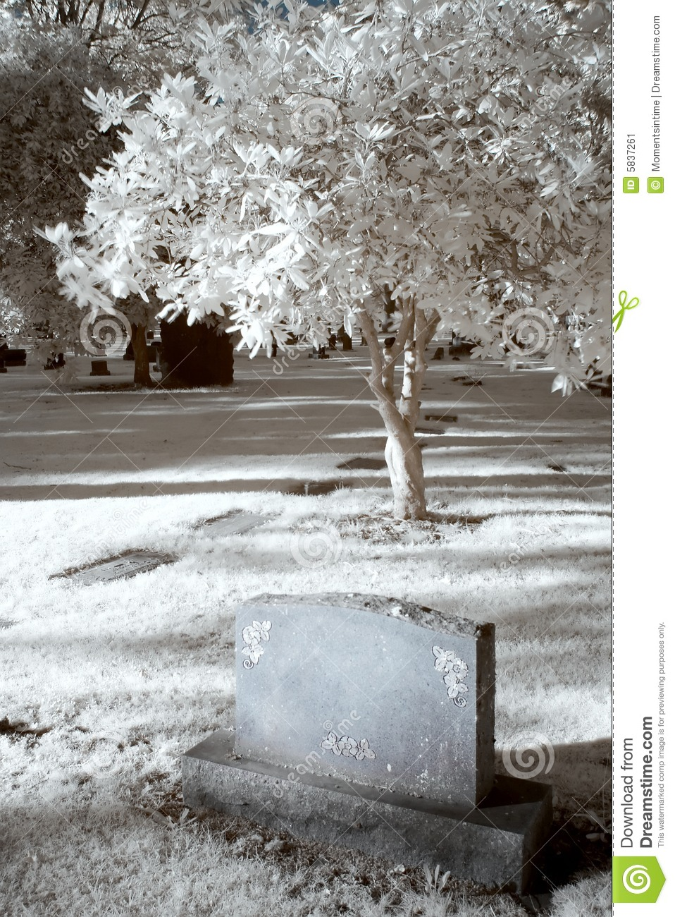 Infrared Cemetary