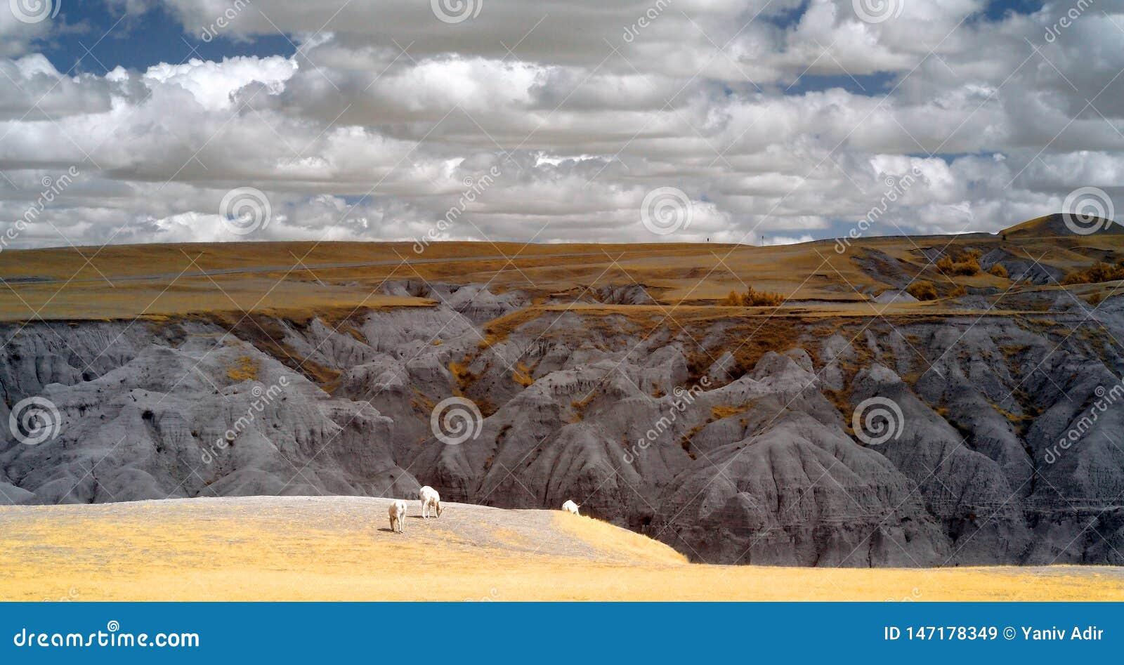 Badlands National Park, Infrared. South Dakota.