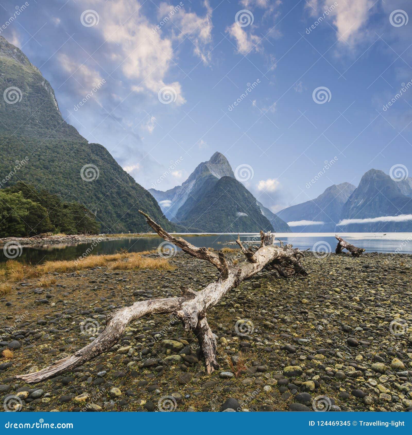 Infuła szczyt i Milford dźwięk Nowa Zelandia