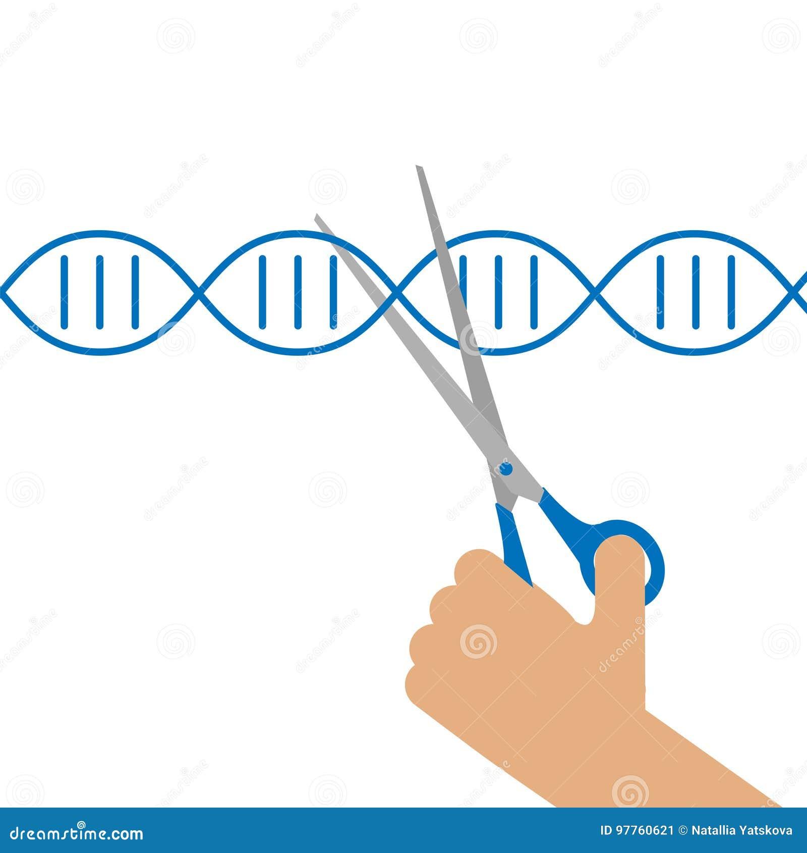 Ingegneria genetica manuale