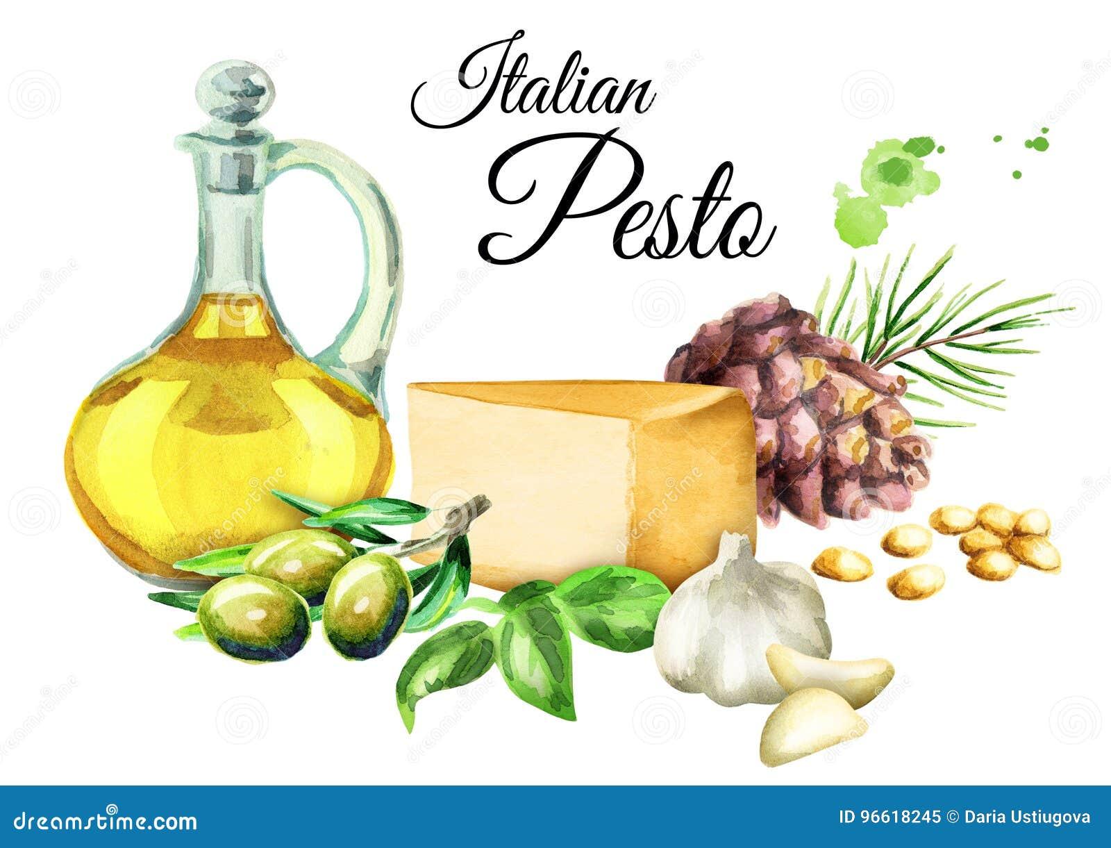 Ingrediënten voor saus Pesto, populaire Italiaanse kruidsaus Geïsoleerdj op witte achtergrond De illustratie van de waterverf