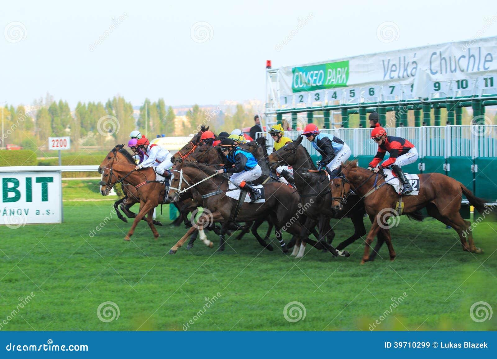 Inizi nella corsa di cavalli a Praga