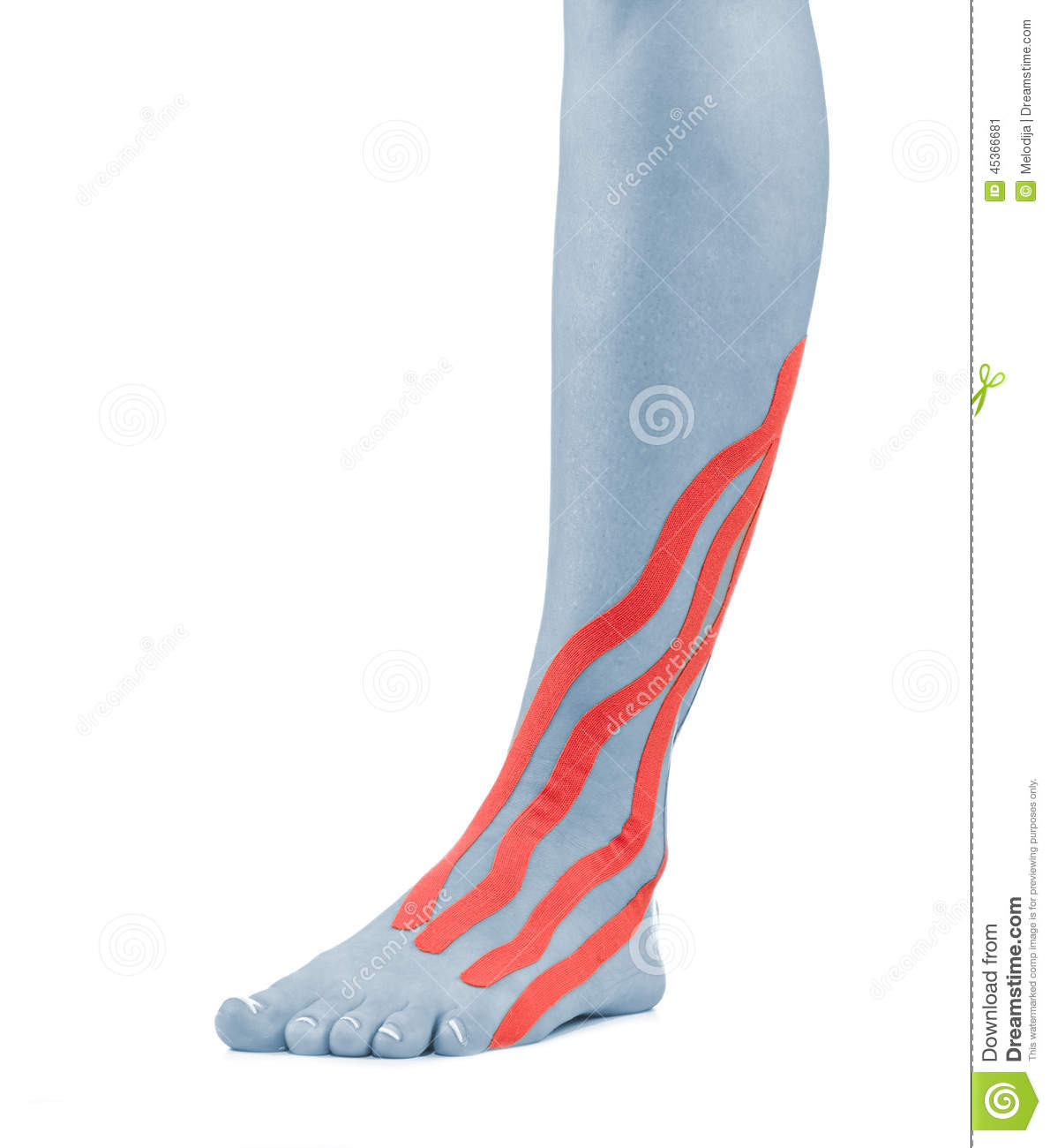 Injured Ankle Stock Photo - Image: 45366681