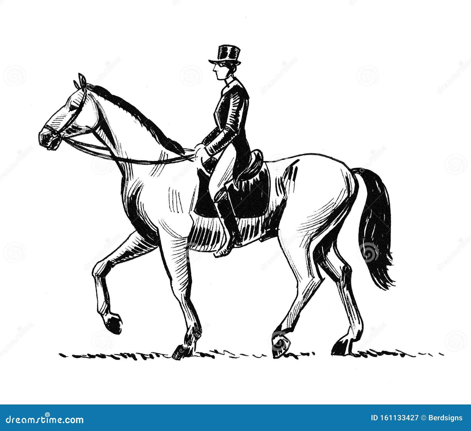 Man On Horse Stock Illustration Illustration Of White 161133427