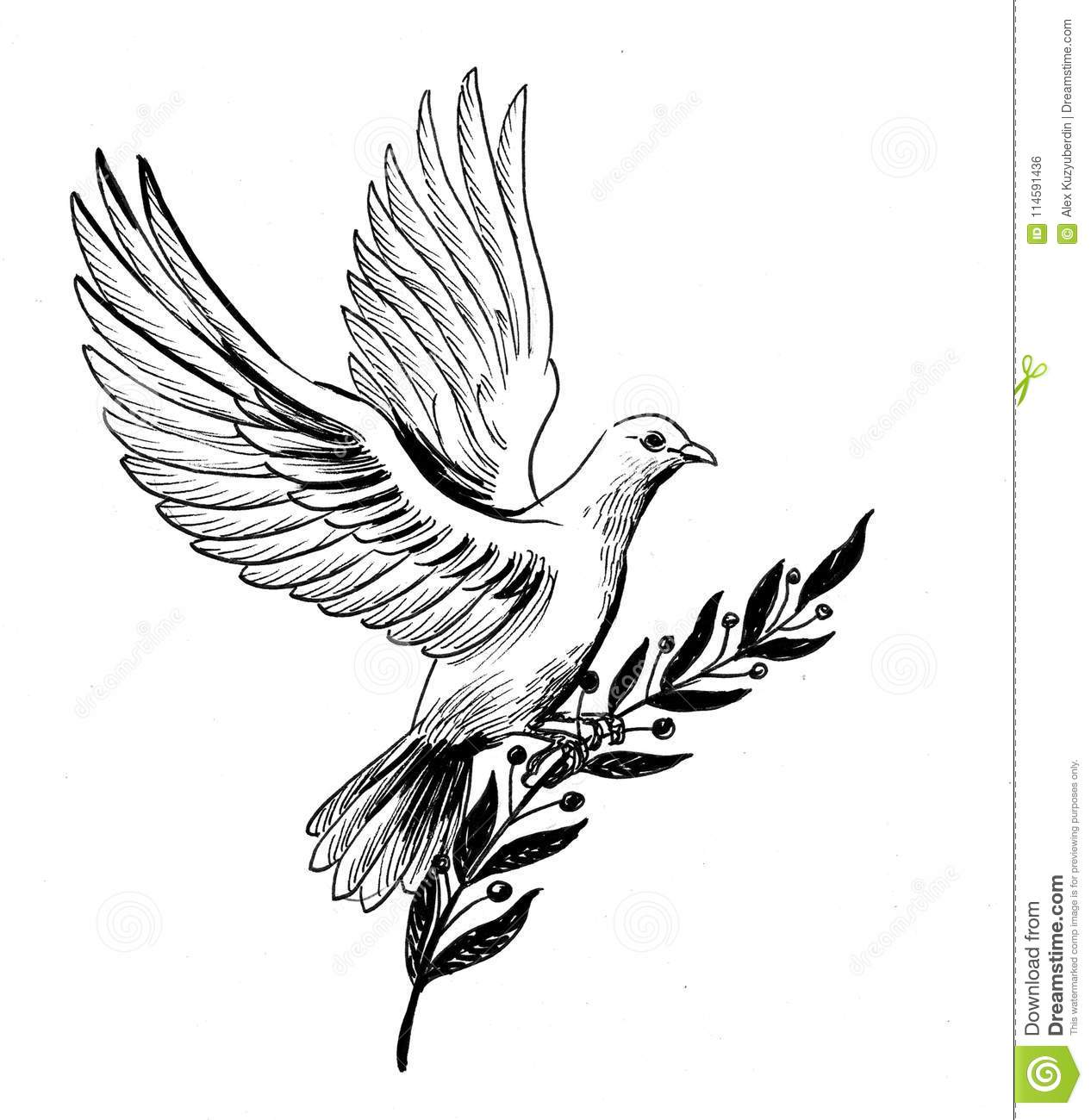 Dove Of Peace Stock Illustration Illustration Of Feather 114591436