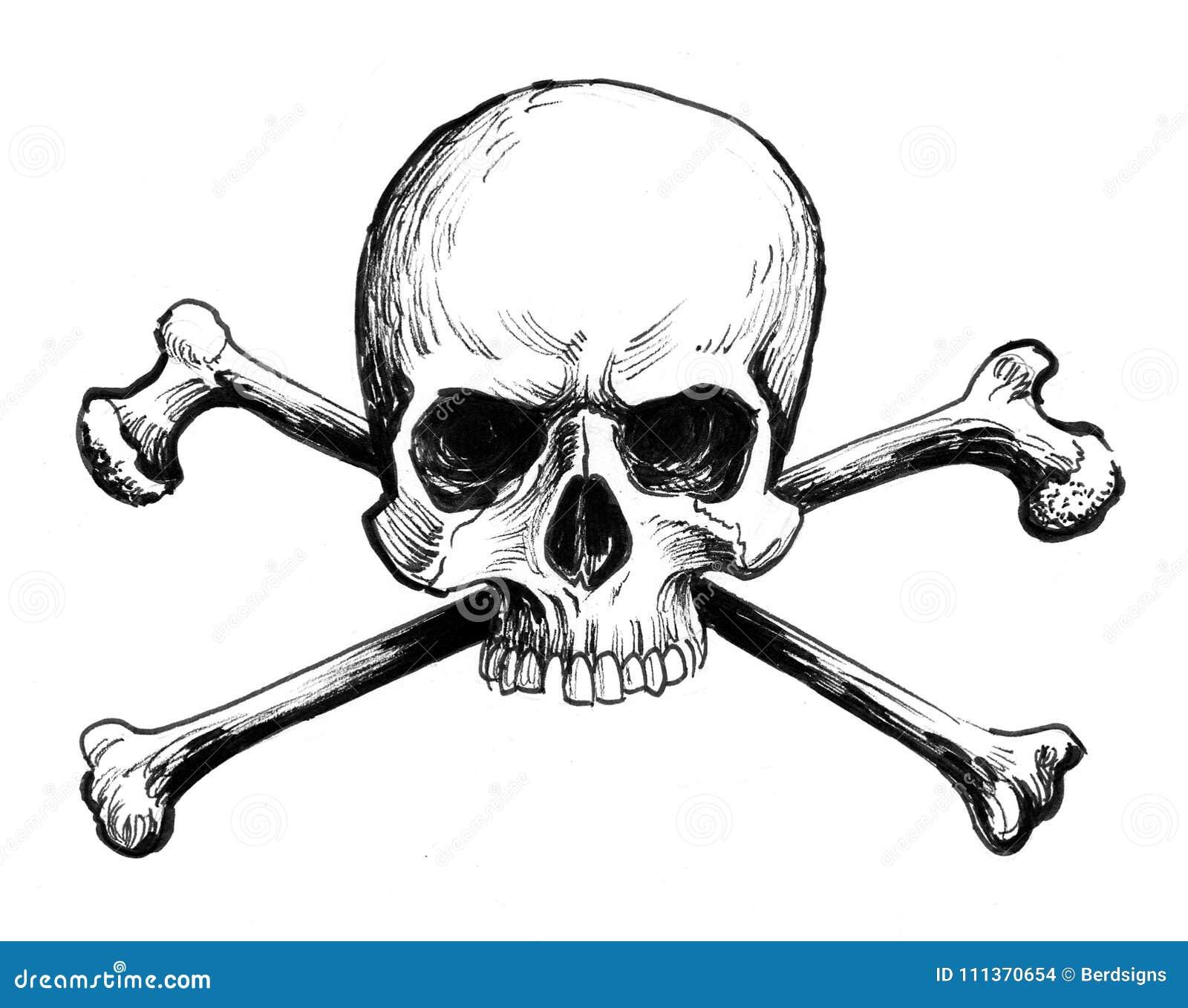 Skull And Bones Stock Illustration Illustration Of Drawing 111370654