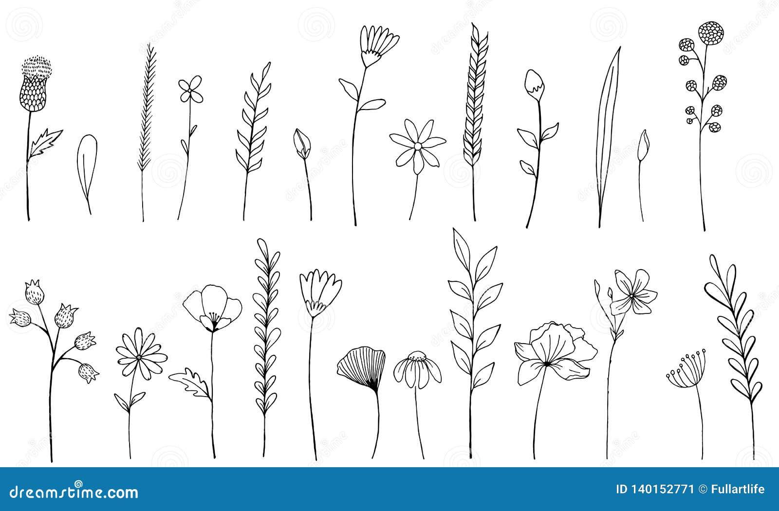 Inktwildflowers geïsoleerde elementen Nam de hand getrokken papaver, klis, tarwe, wild gras, kamille, korenbloem, geranium toe