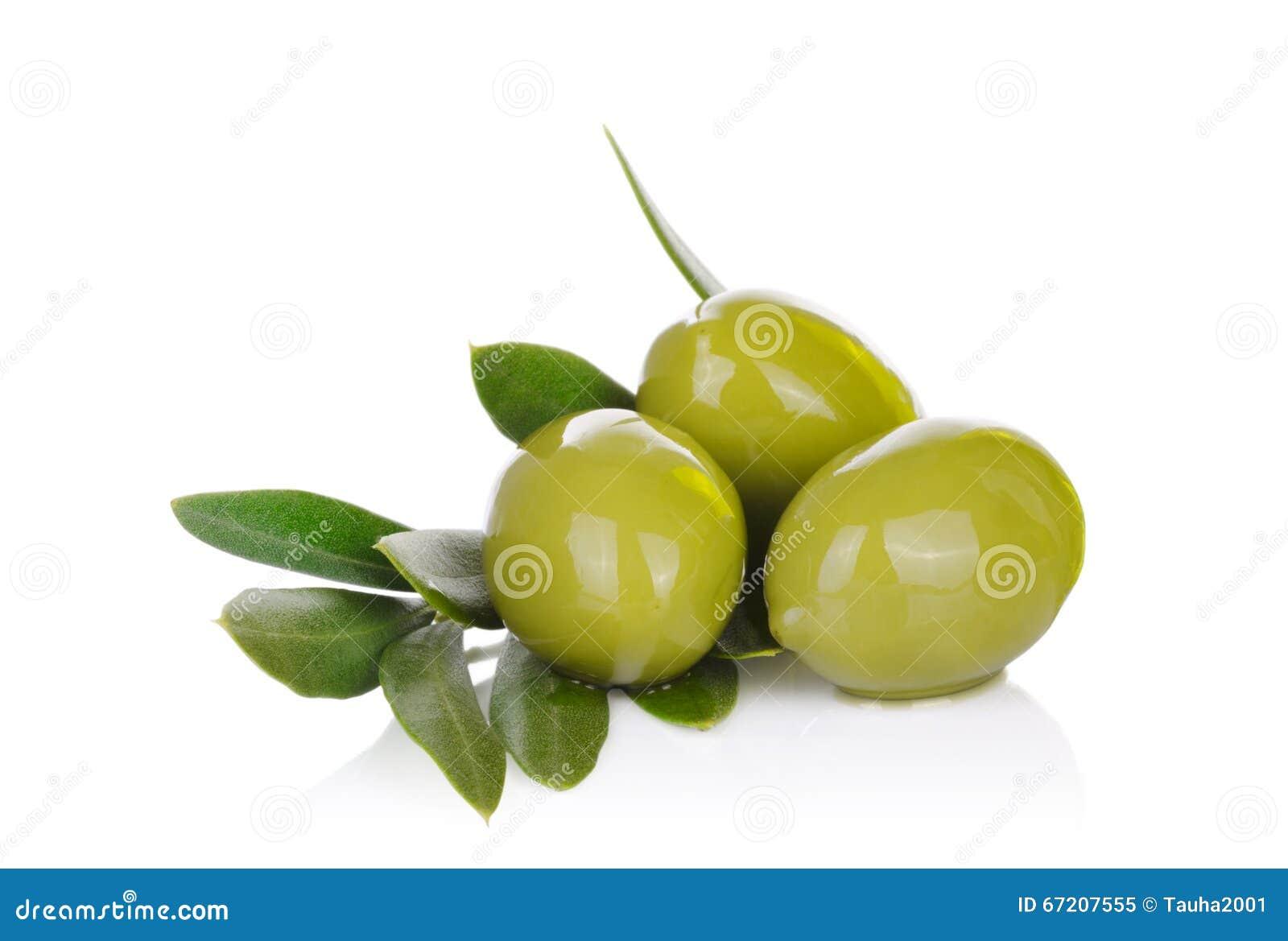 Inlagda gröna oliv och olivträdfilial på en vit