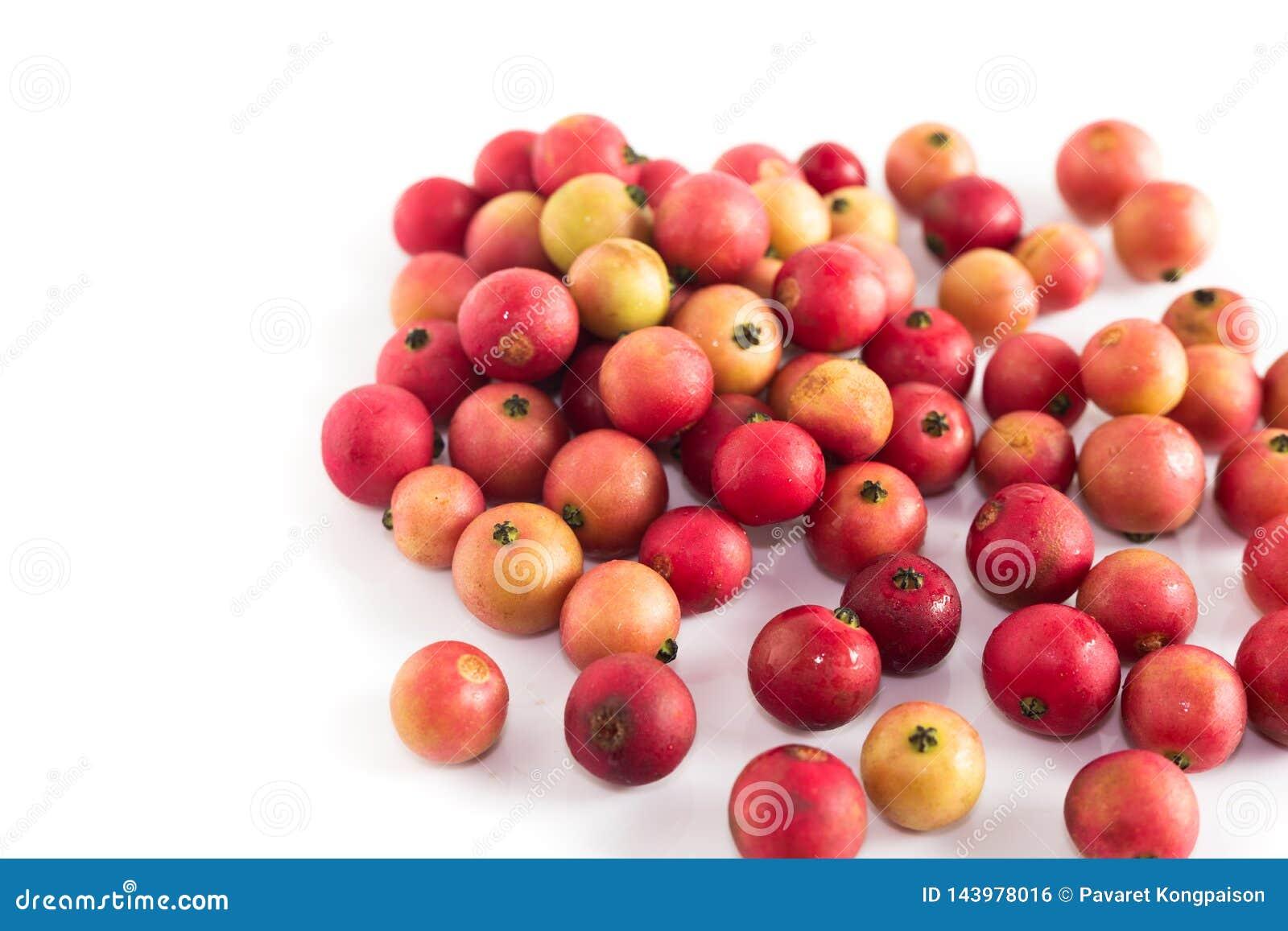 Inna Jamajskiej wiśni owoc jest Malayan Czereśniowy Calabura Dżem na białym tle