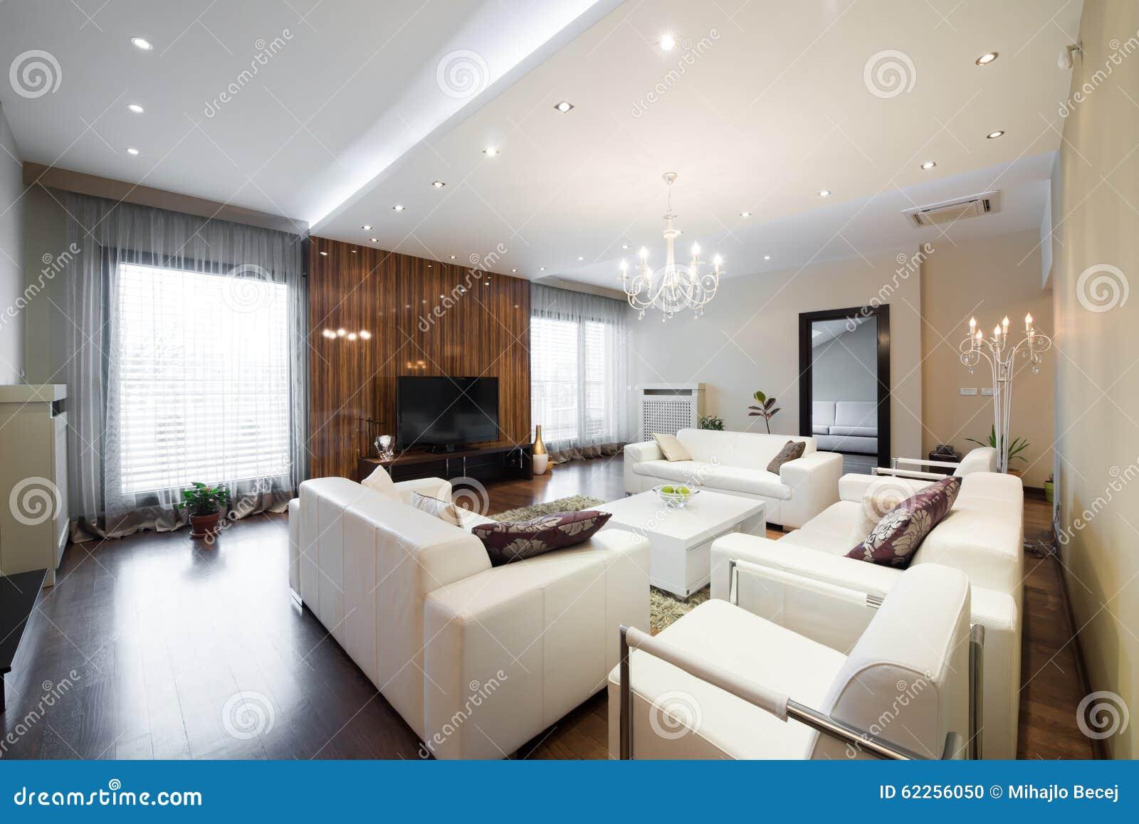 Innenraum Eines Modernen Geräumigen Wohnzimmers Stockfoto - Bild von ...