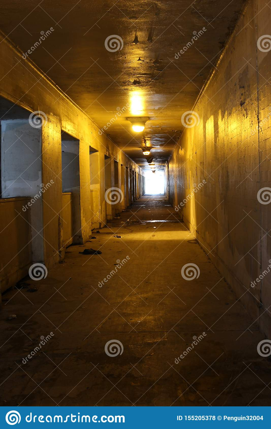 Inom av en tunnel med ljus