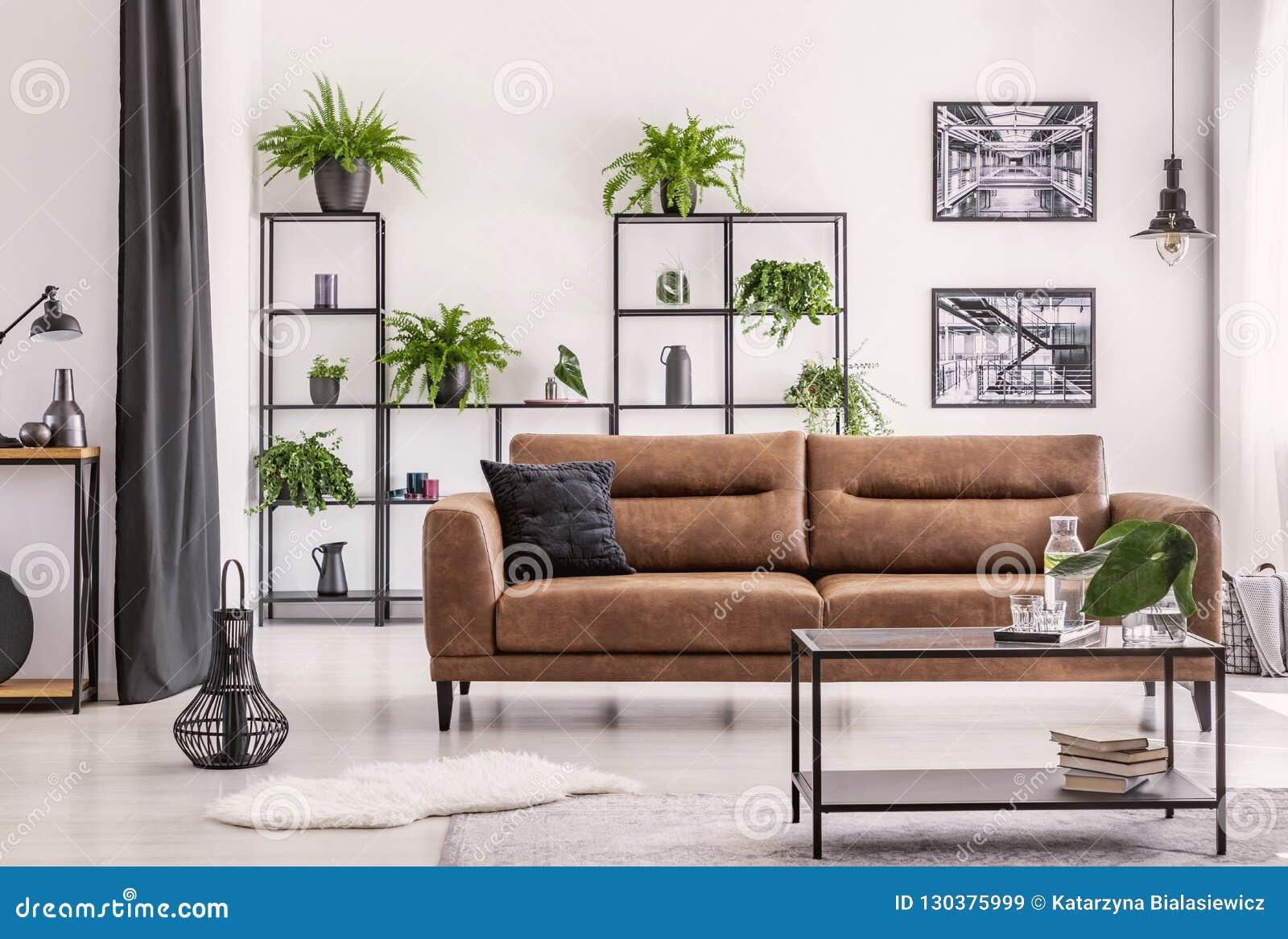 Inredesign som skapas av växtvännen, den olika sorten av plowers och växten på en svart metallhylla bak den stora lädersoffan