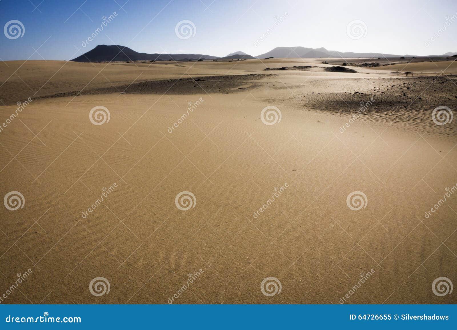 Insabbi i modelli il parco naturale, Corralejo, isole Canarie, Spagna
