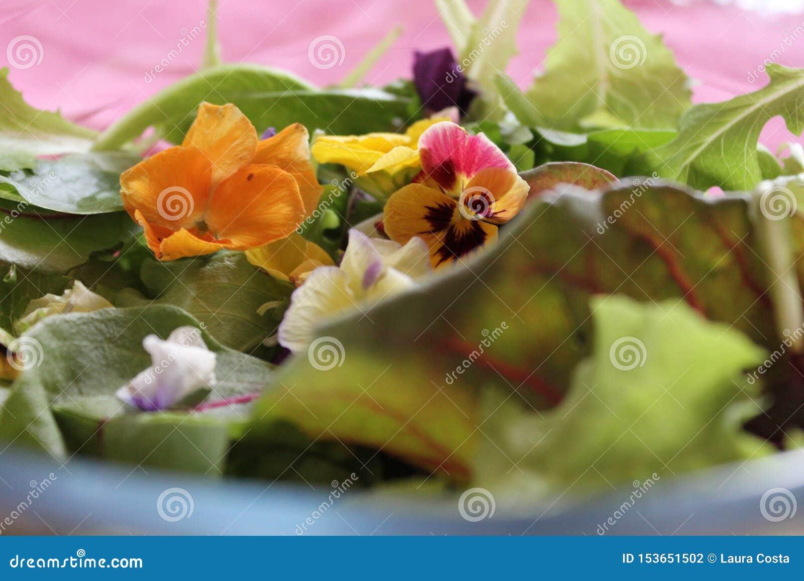 Insalata verde con i fiori gialli e viola