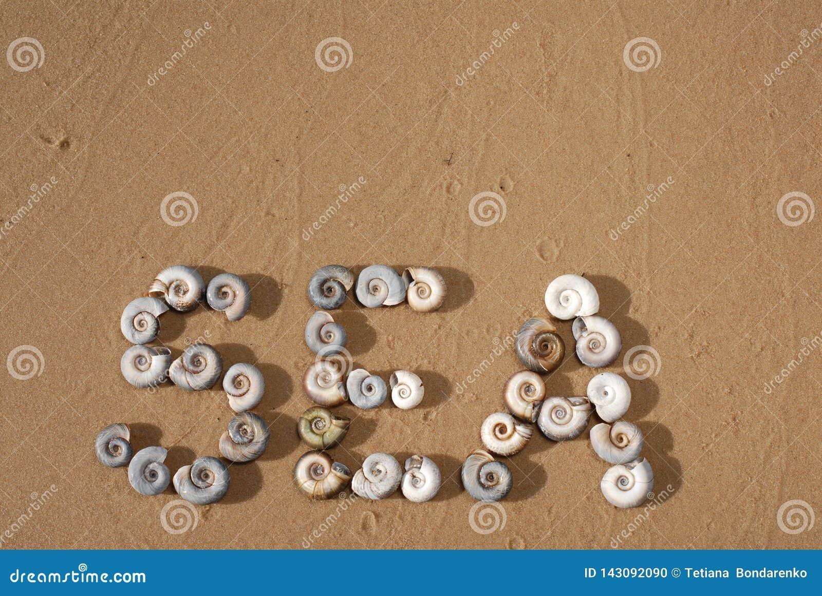 A inscrição 'mar 'é escrita pelo shellson pequeno do mar a areia amarela