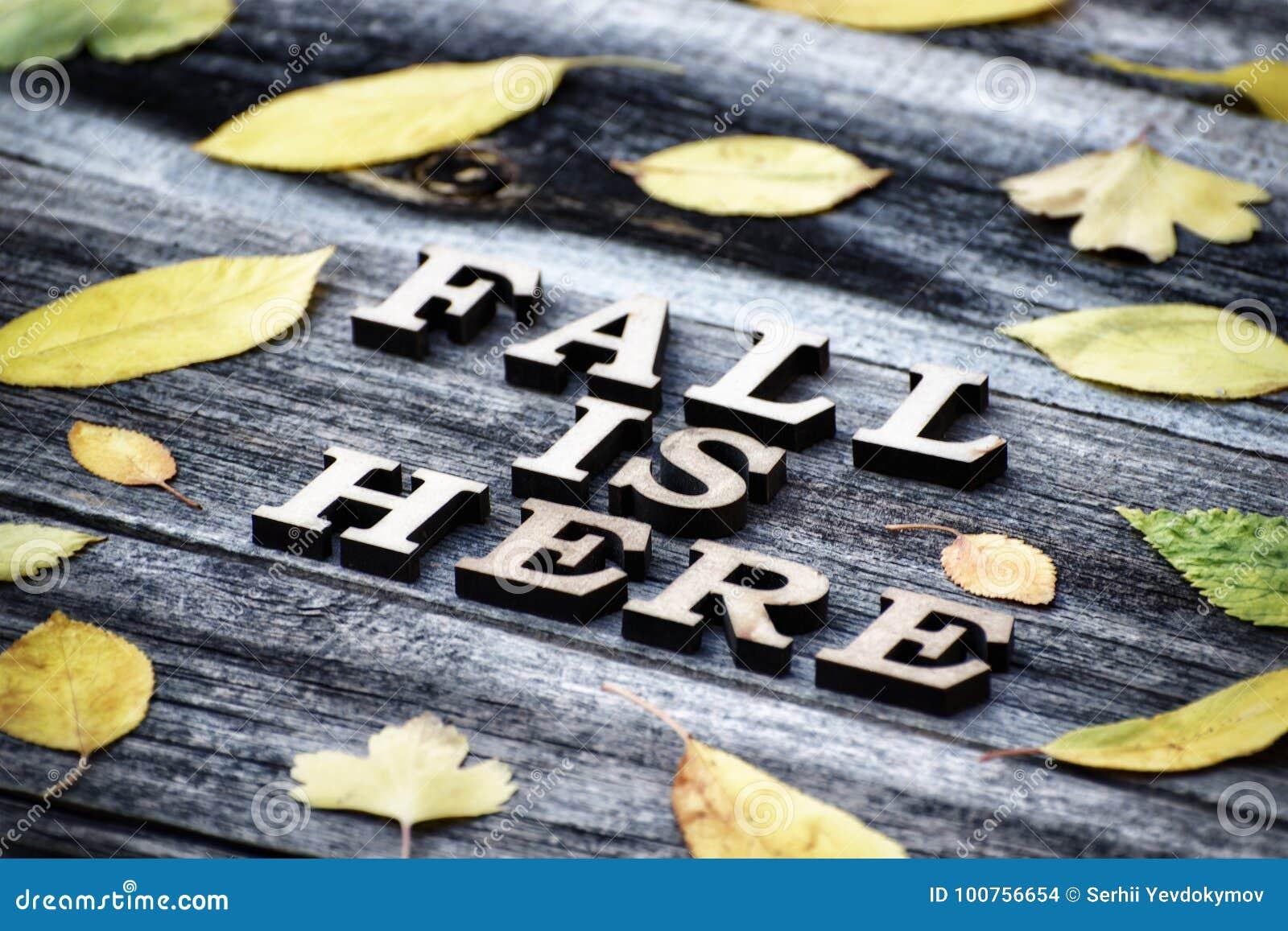 Inscription A queda está aqui, letras de madeira Quadro das folhas amarelas, fundo de madeira