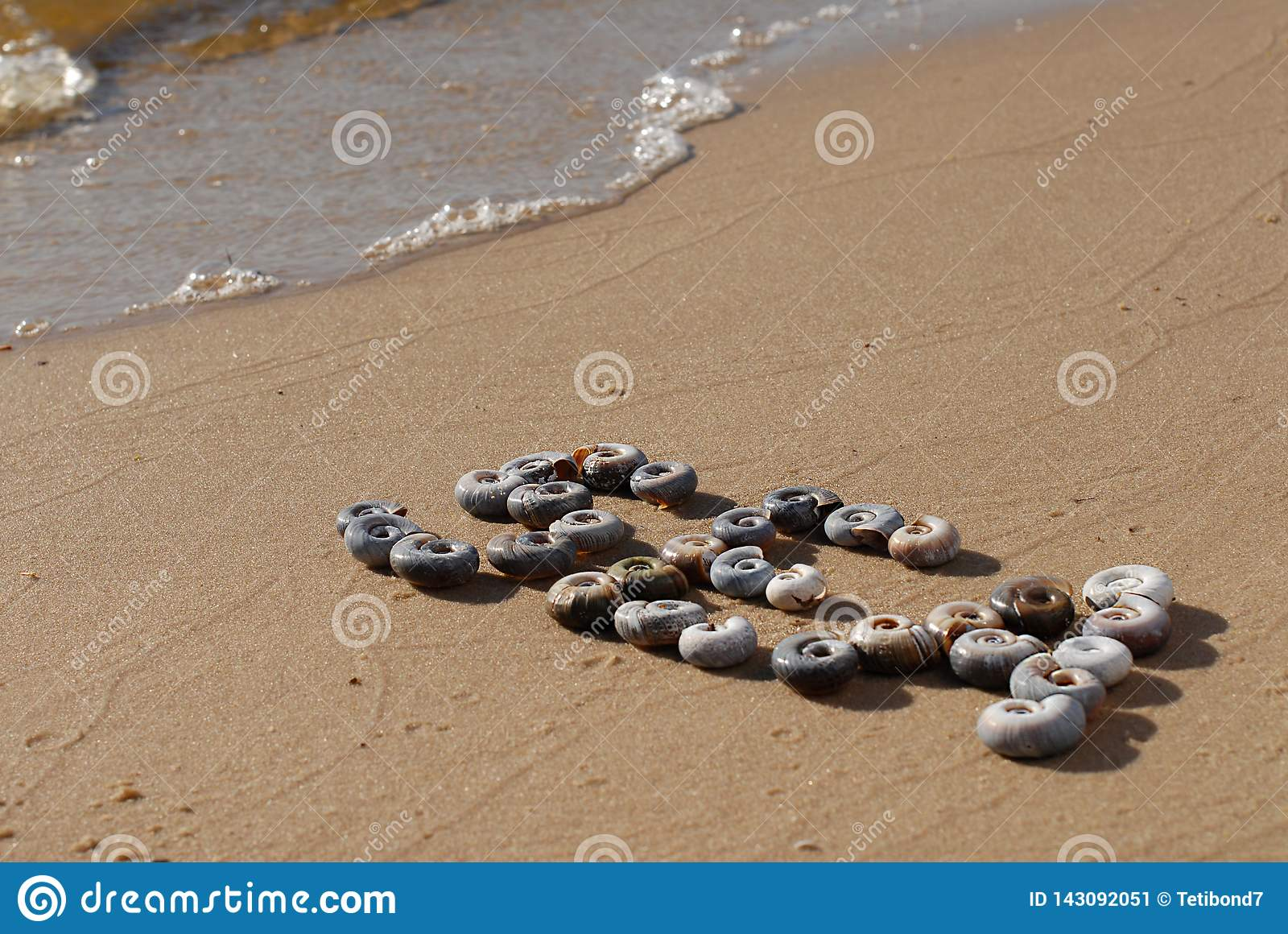 The inscription `Sea` is  written by small sea shellson the yellow sand