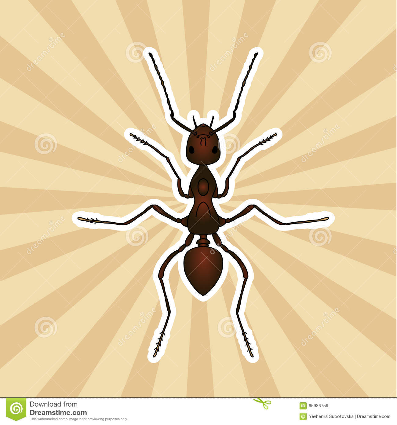 Insect Anatomy. Sticker Formica Exsecta. Sketch Of Ant. Ant Design ...
