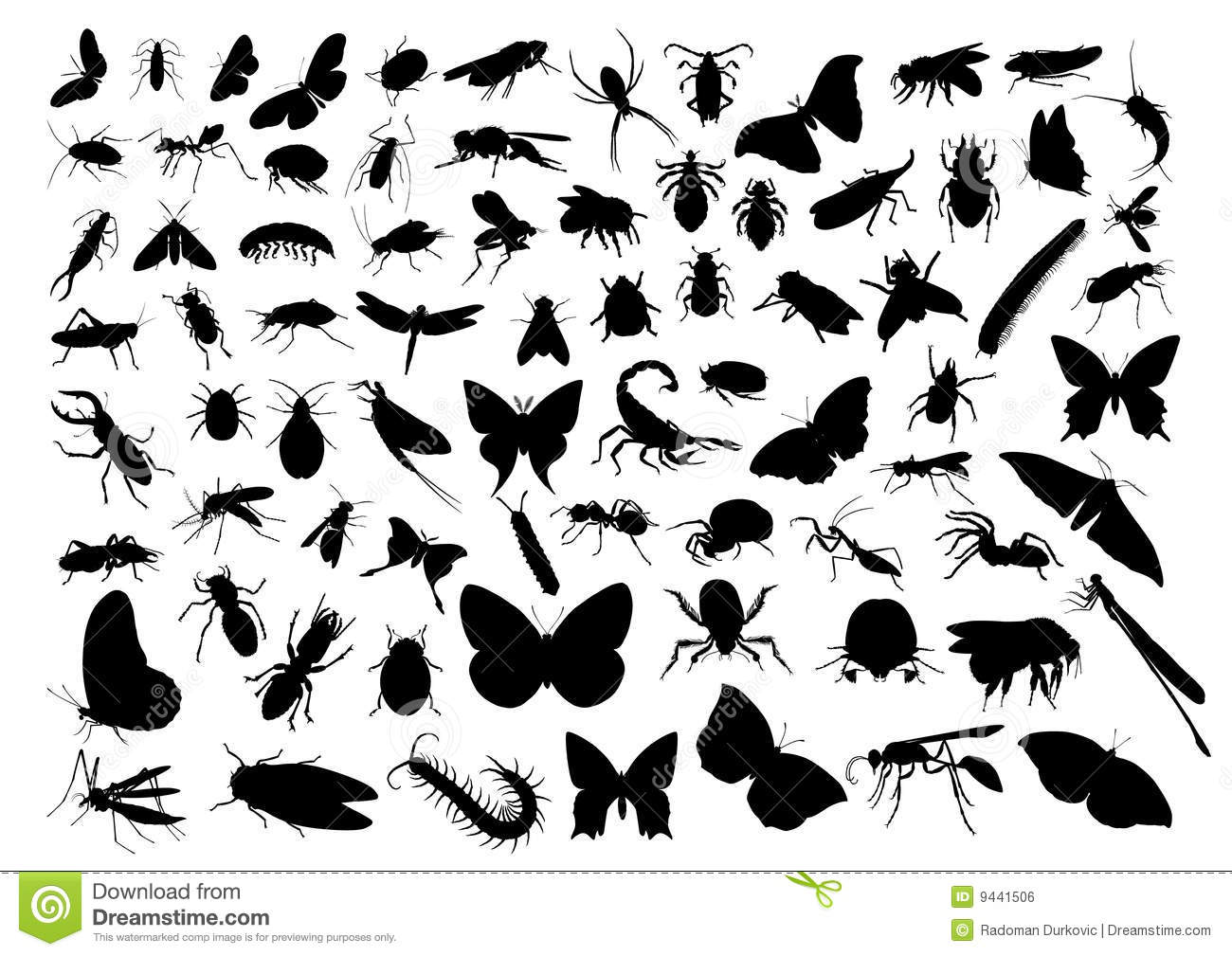 insect silhouettes stock vector illustration of moth