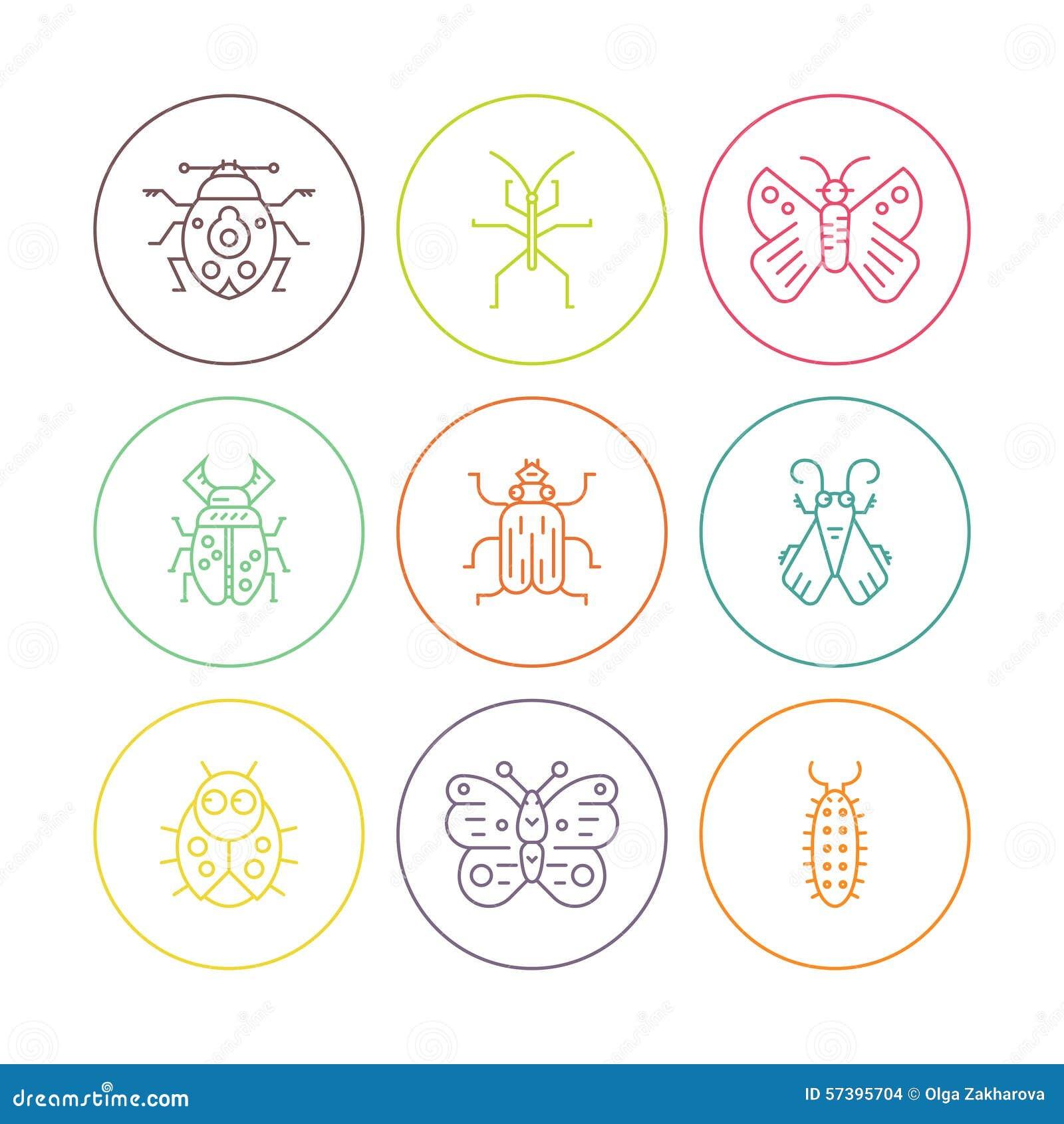 Insecten in cirkels