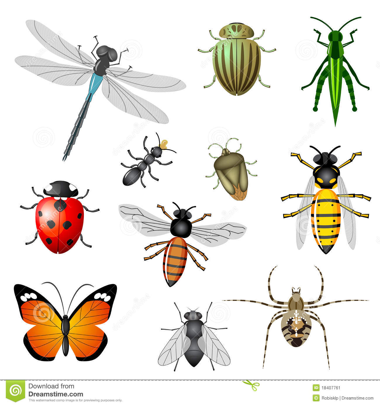 Download Insects and bugs stock vector. Illustration of butterfly - 18407761