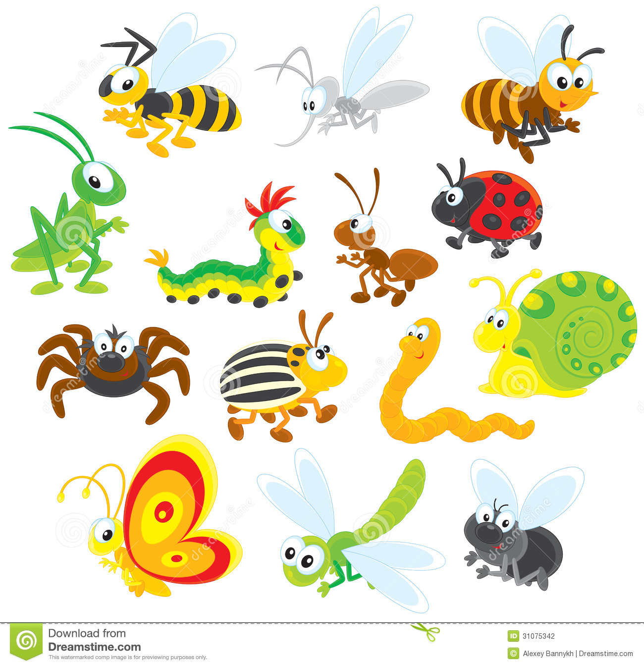 Insects Stock Photography Image 31075342