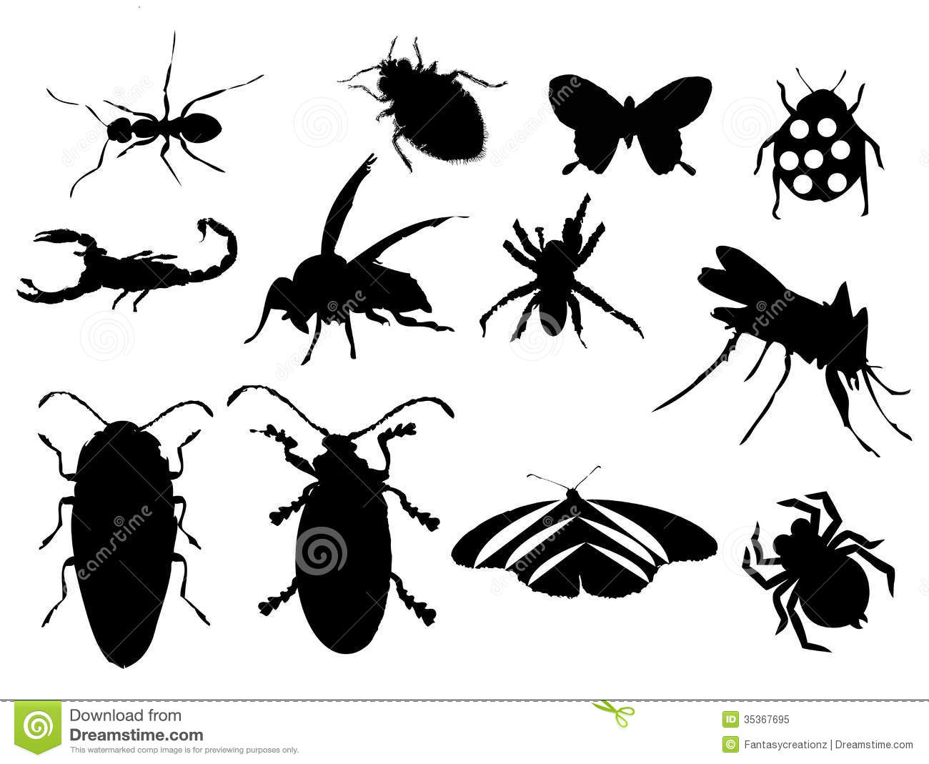 Download Insects stock vector. Illustration of moth, caterpillar - 35367695