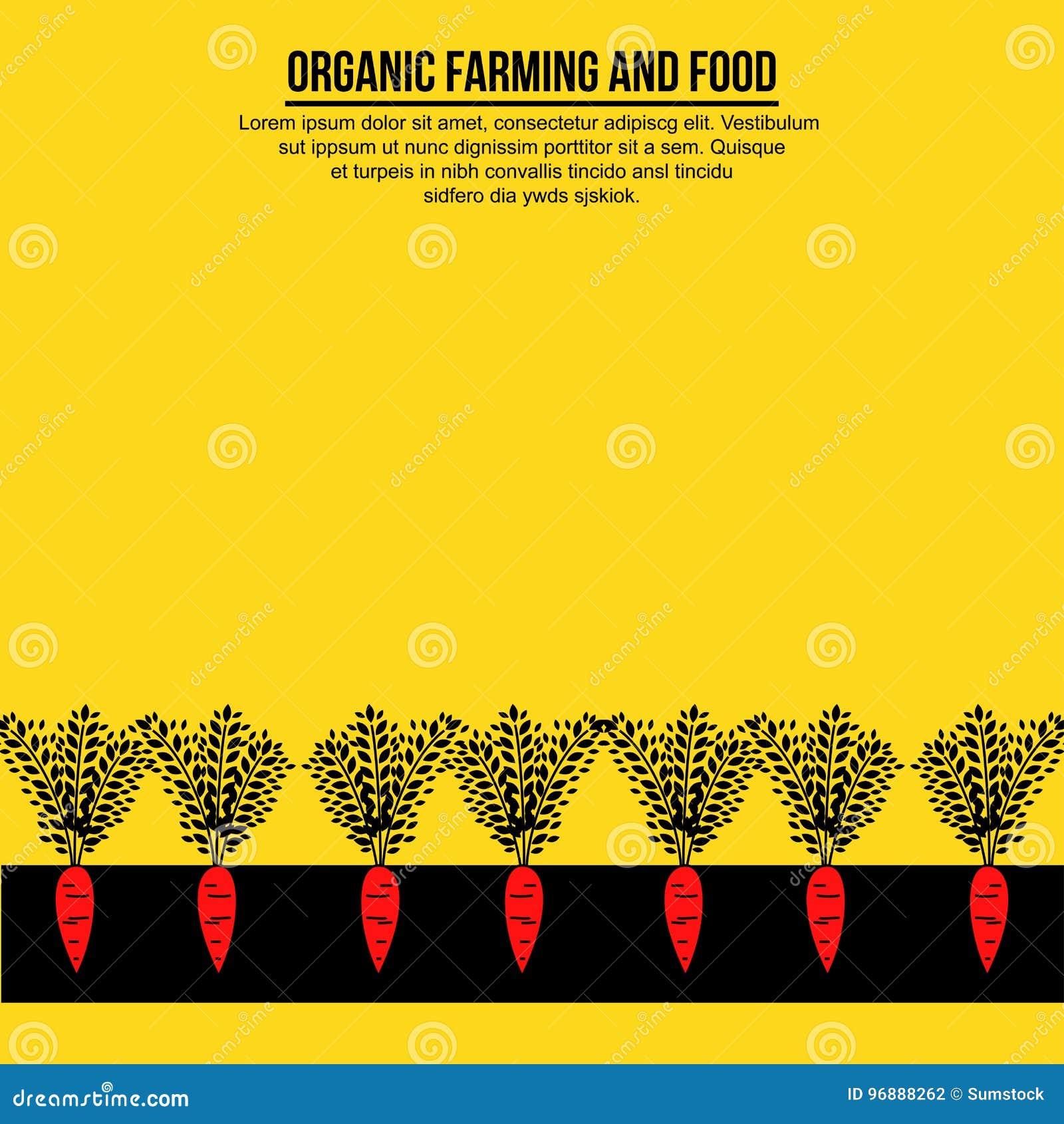 Insegna minimalista delle carote sulla terra
