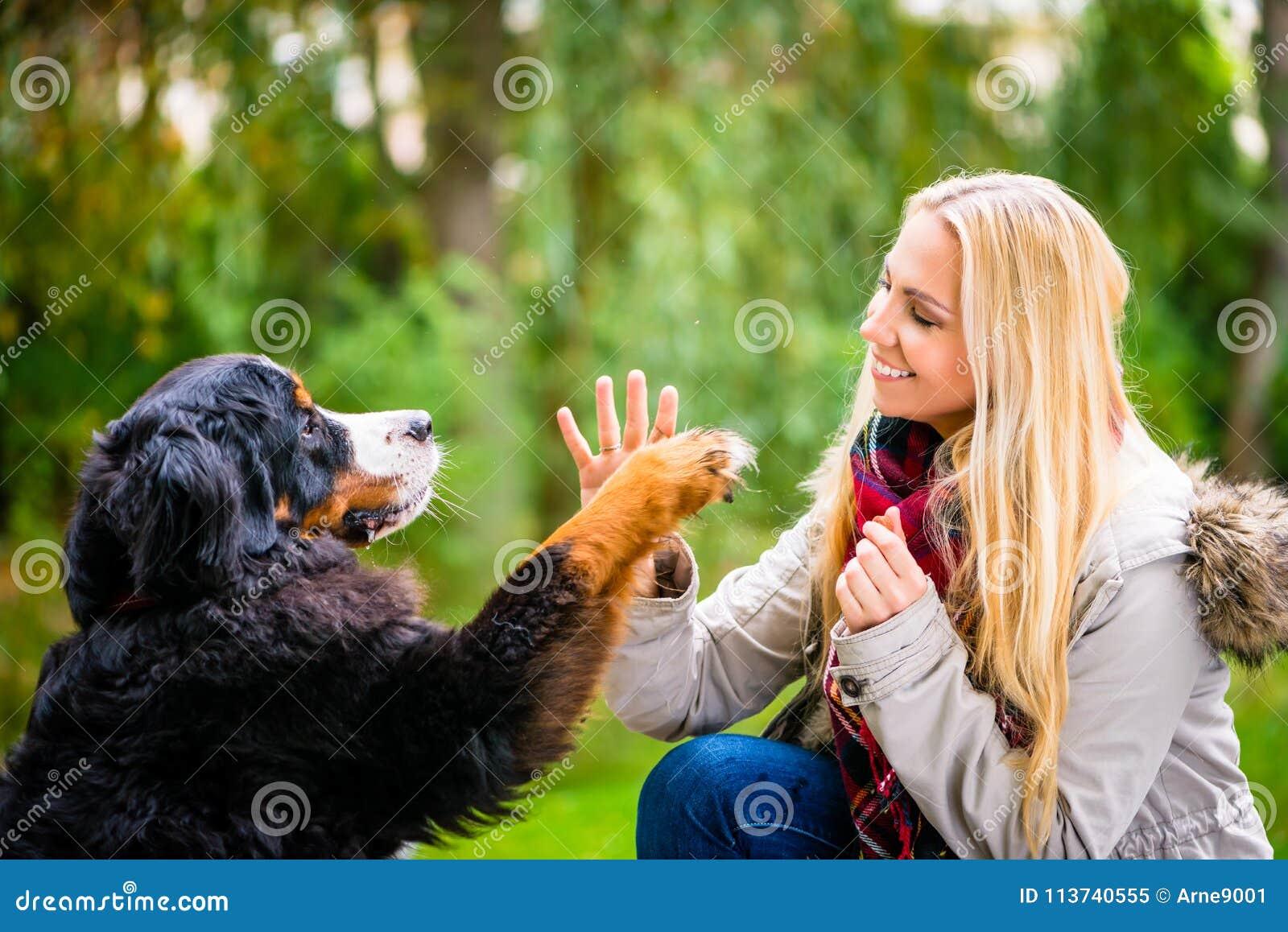 Insegua stringere le mani con la zampa alla sua donna