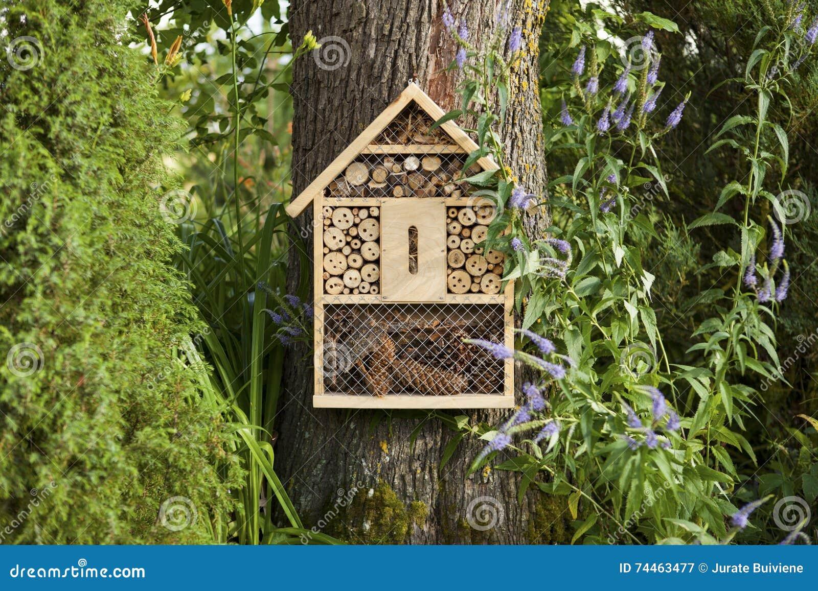 insekten haus stockbild bild von flaschen barke bienen 74463477. Black Bedroom Furniture Sets. Home Design Ideas