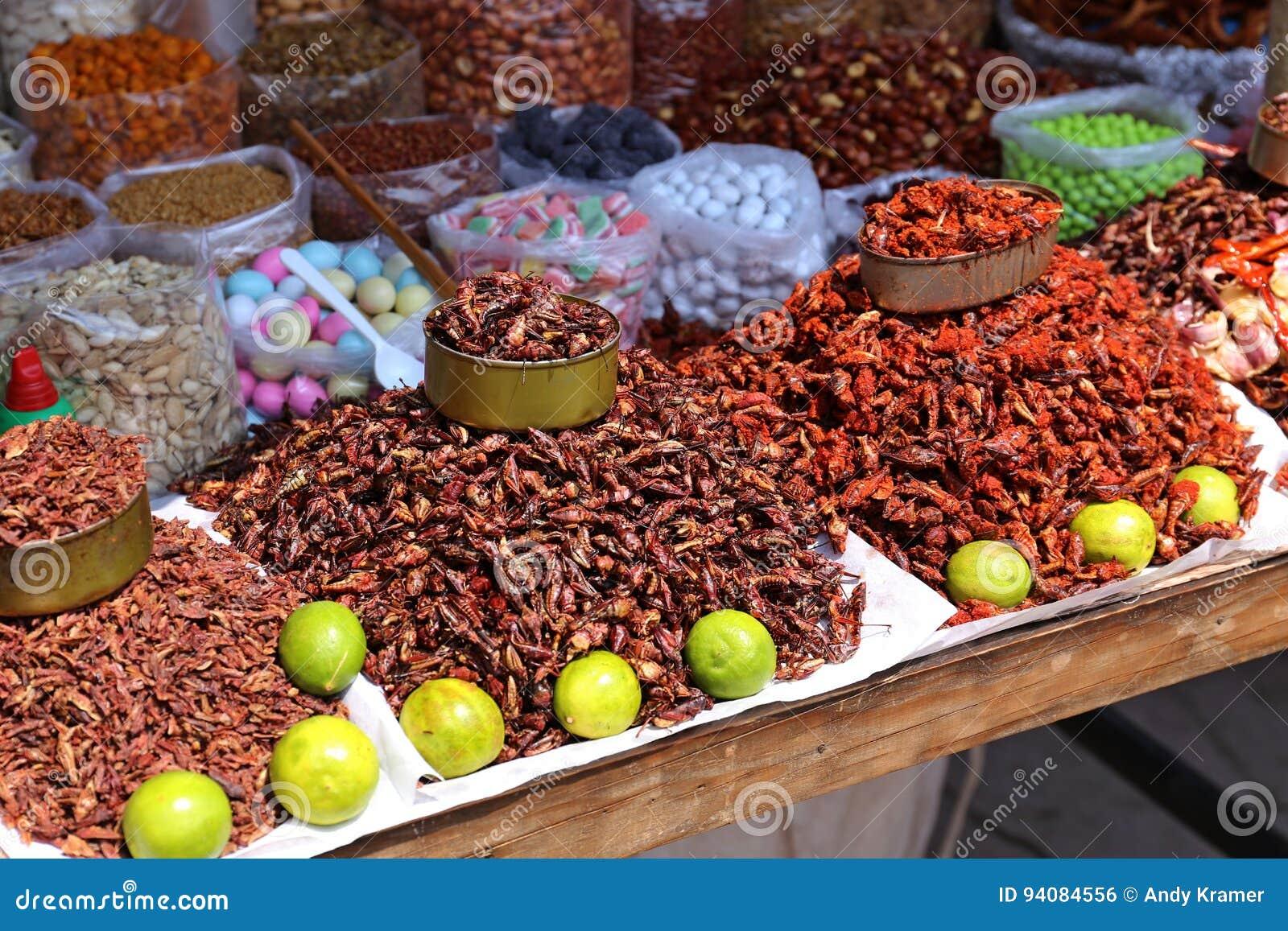 Insekty Karmowi w Meksyk