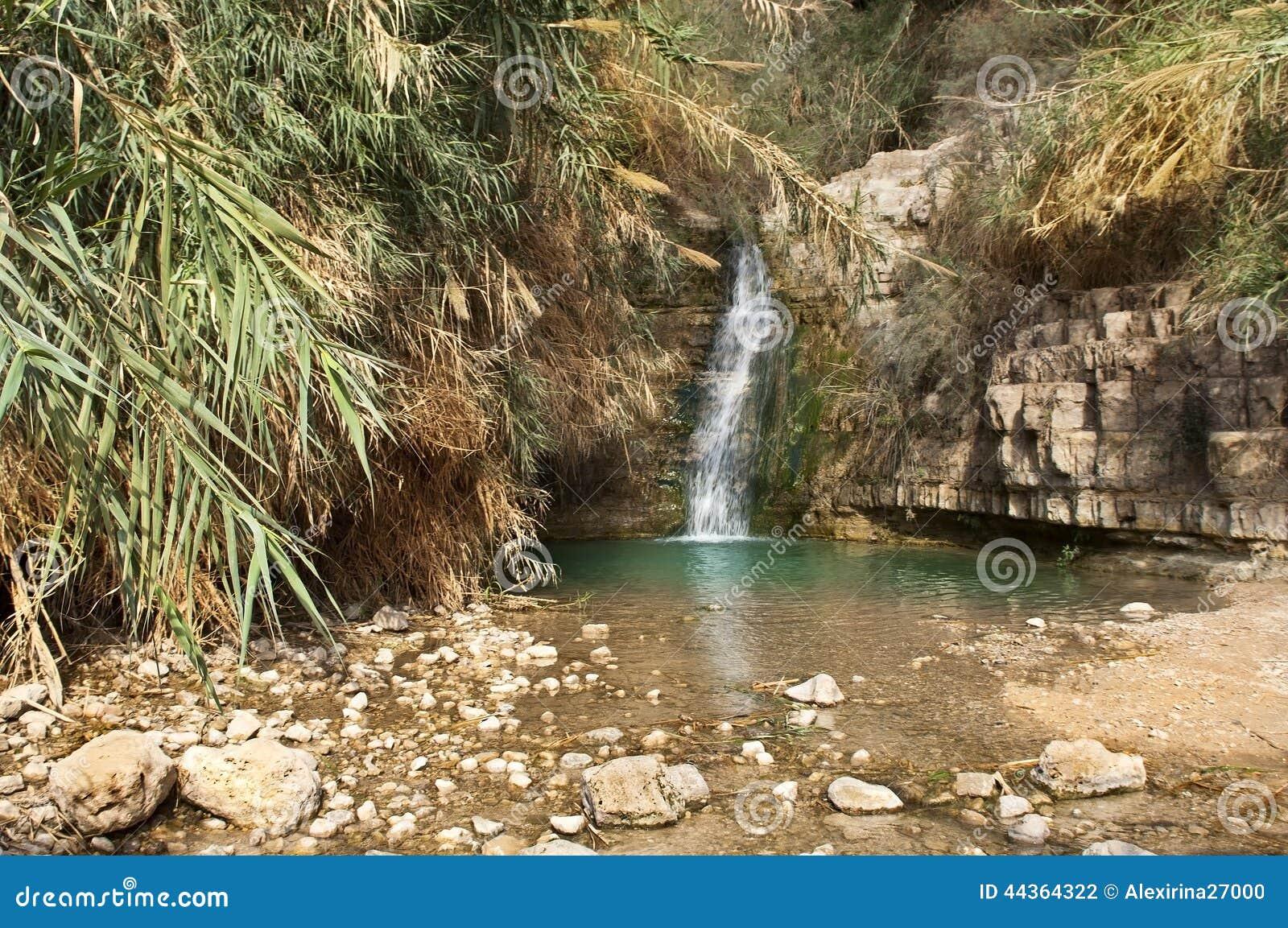 Insenatura di Ein Gedi, mar Morto, Israele