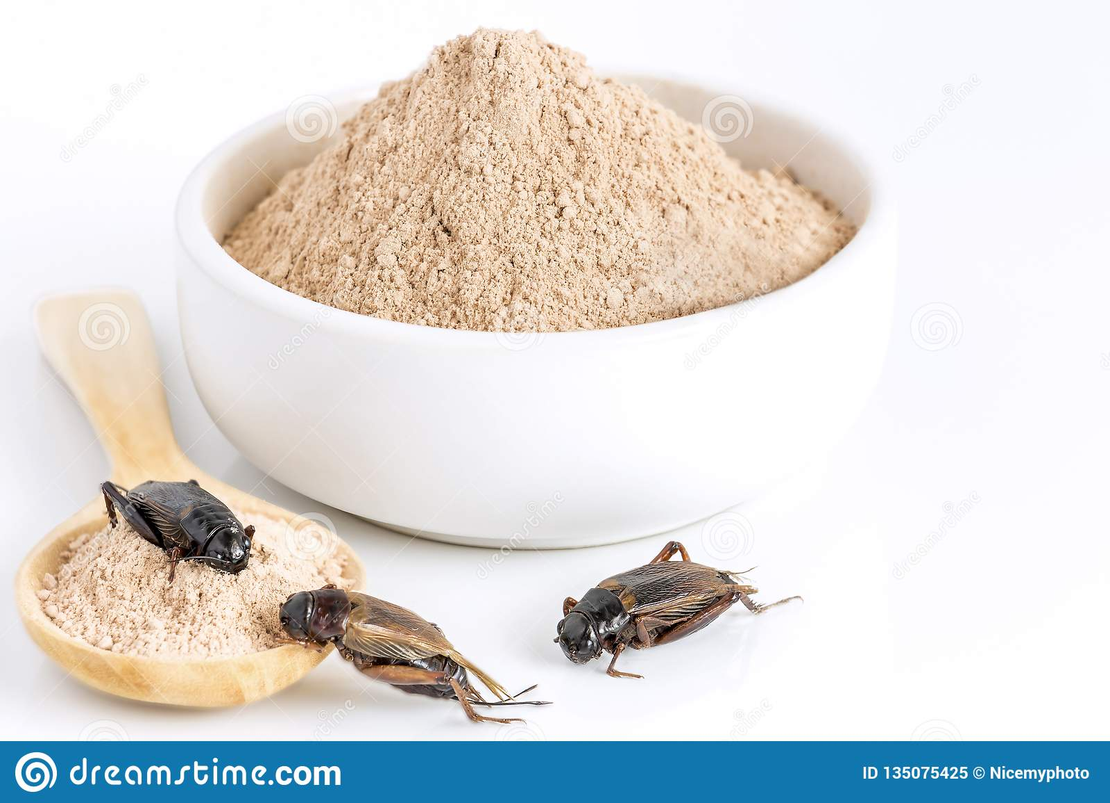 Inseto do pó do grilo para comer como os alimentos feitos da carne cozinhada do inseto na bacia e da colher de madeira no fundo b