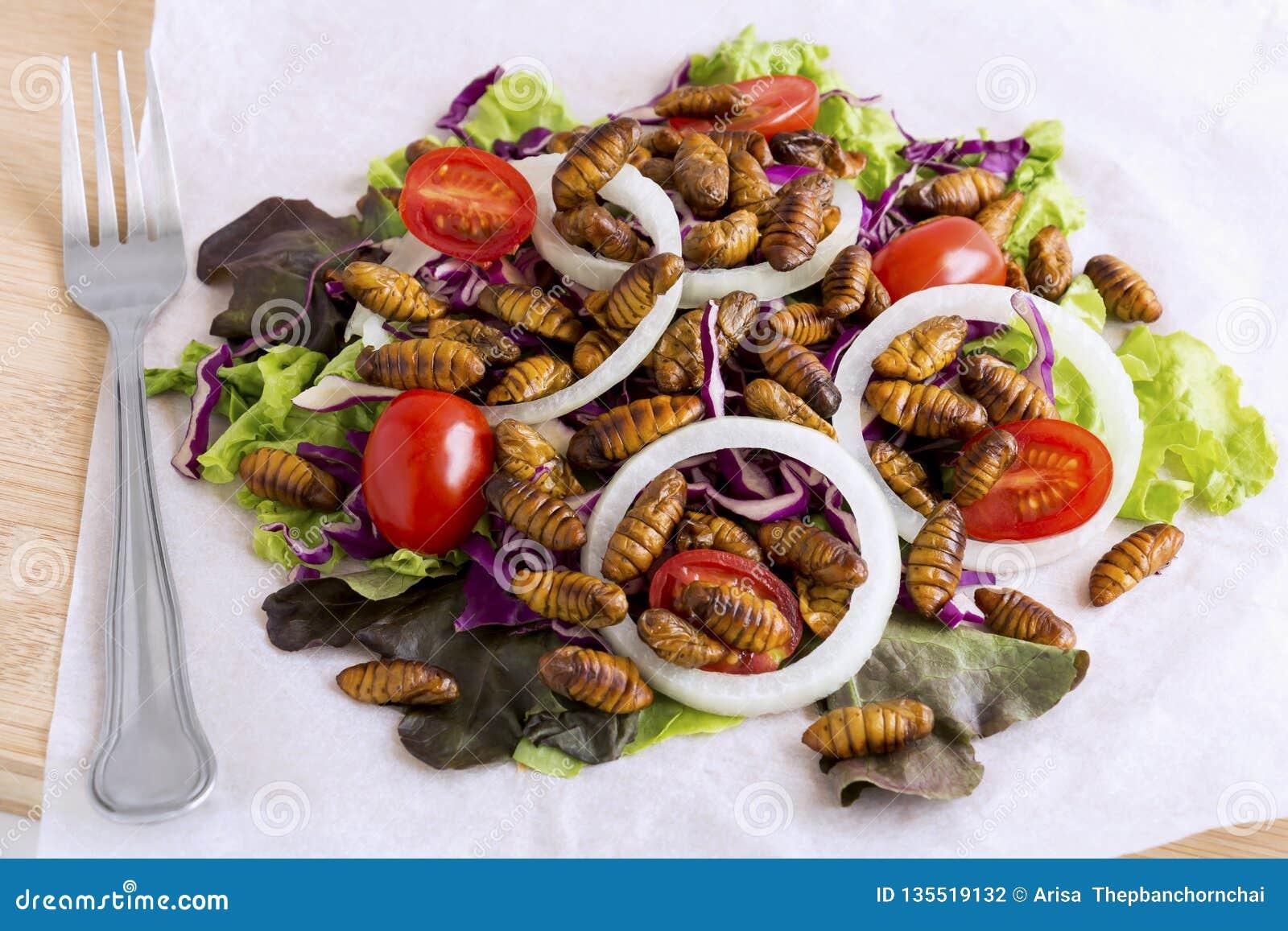 Insetti dell alimento: Insetto del verme o baco da seta fritto di Chrysalis per il cibo come prodotti alimentari nella verdura di