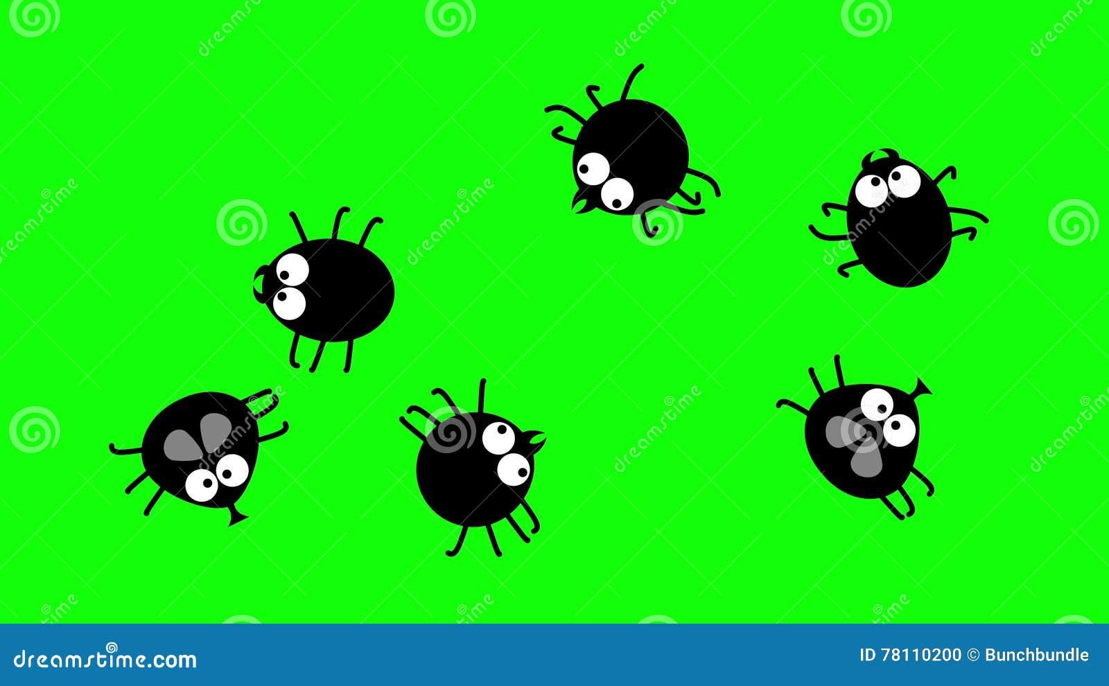 Insetti piccoli neri cheap acari ragno avendo zampe