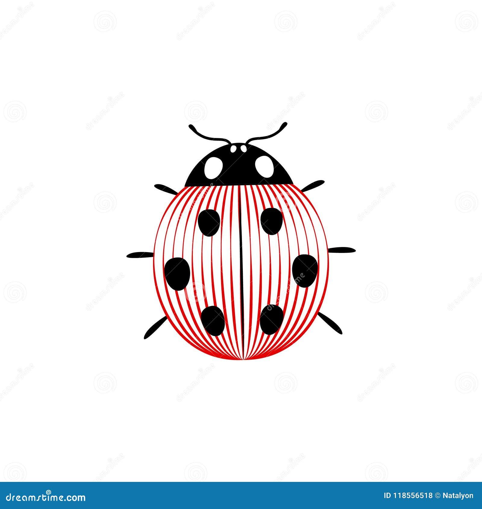 Insetti Bianchi Sul Parquet insetto elegante a strisce in bianco e nero e rosso della