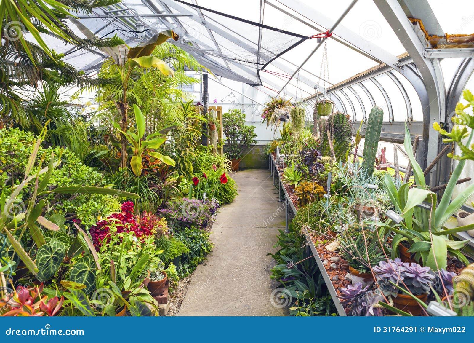 Superb Inside Greenhouse Stock Image Image Of Outdoor Interior Interior Design Ideas Philsoteloinfo